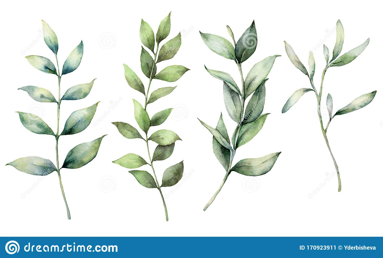 Set Of Watercolor Spring Branches Hand Painted Eucalyptus Thick Branches And Leaves Isolated On A White Background Stock Illustration Illustration Of Foliage Leaf 170923911
