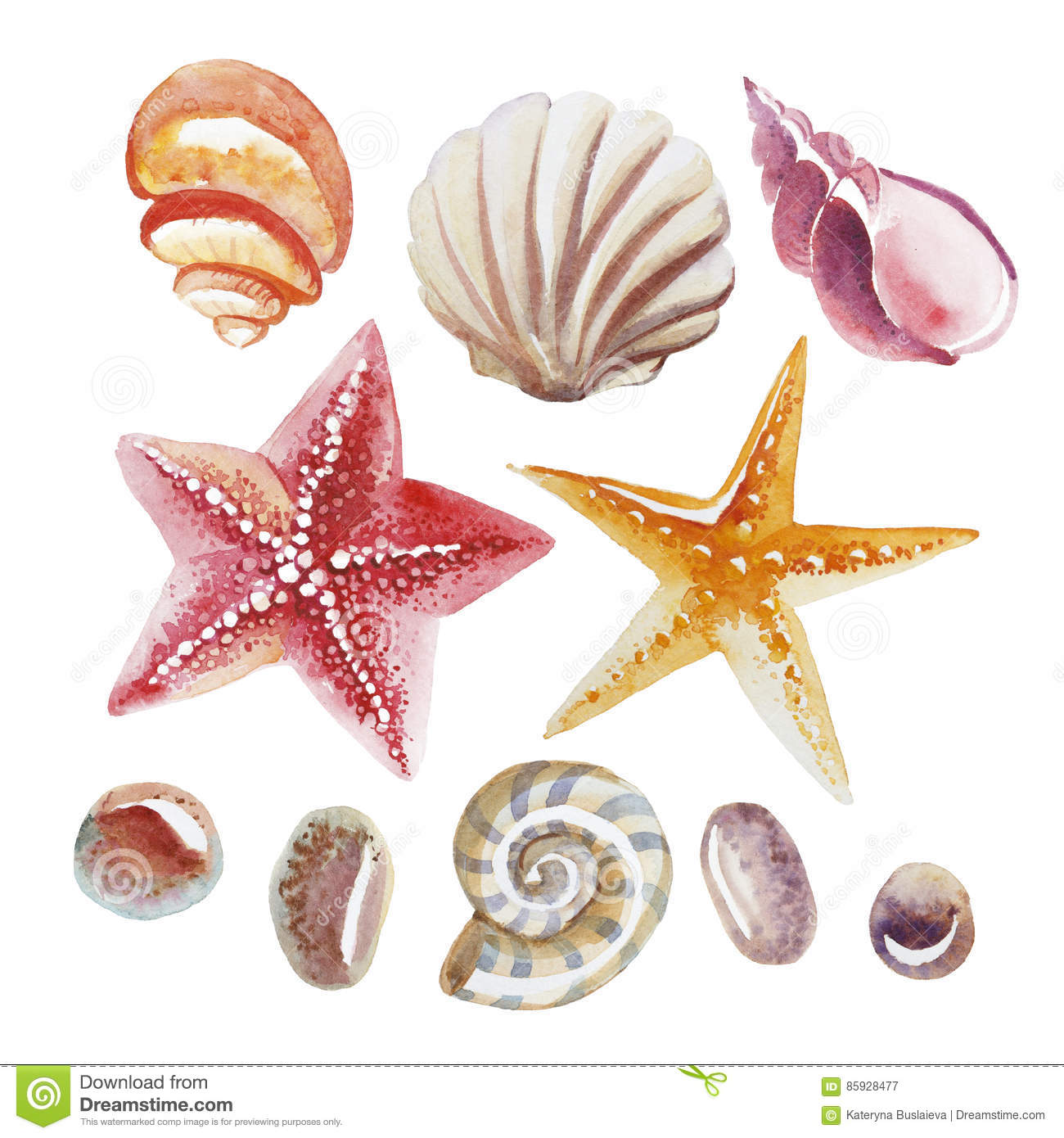 Set of Watercolor topical shell, starfish and pebble isolated