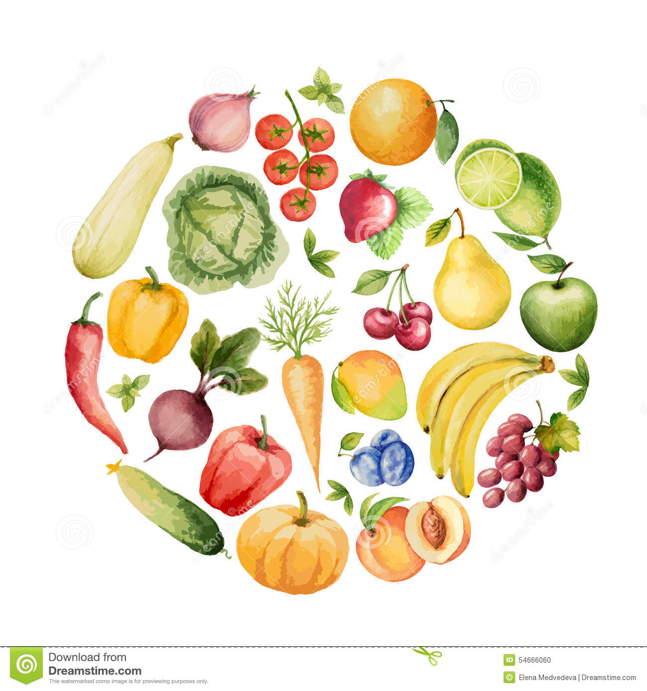 Set Of Watercolor Vegetables And Fruits Stock Vector