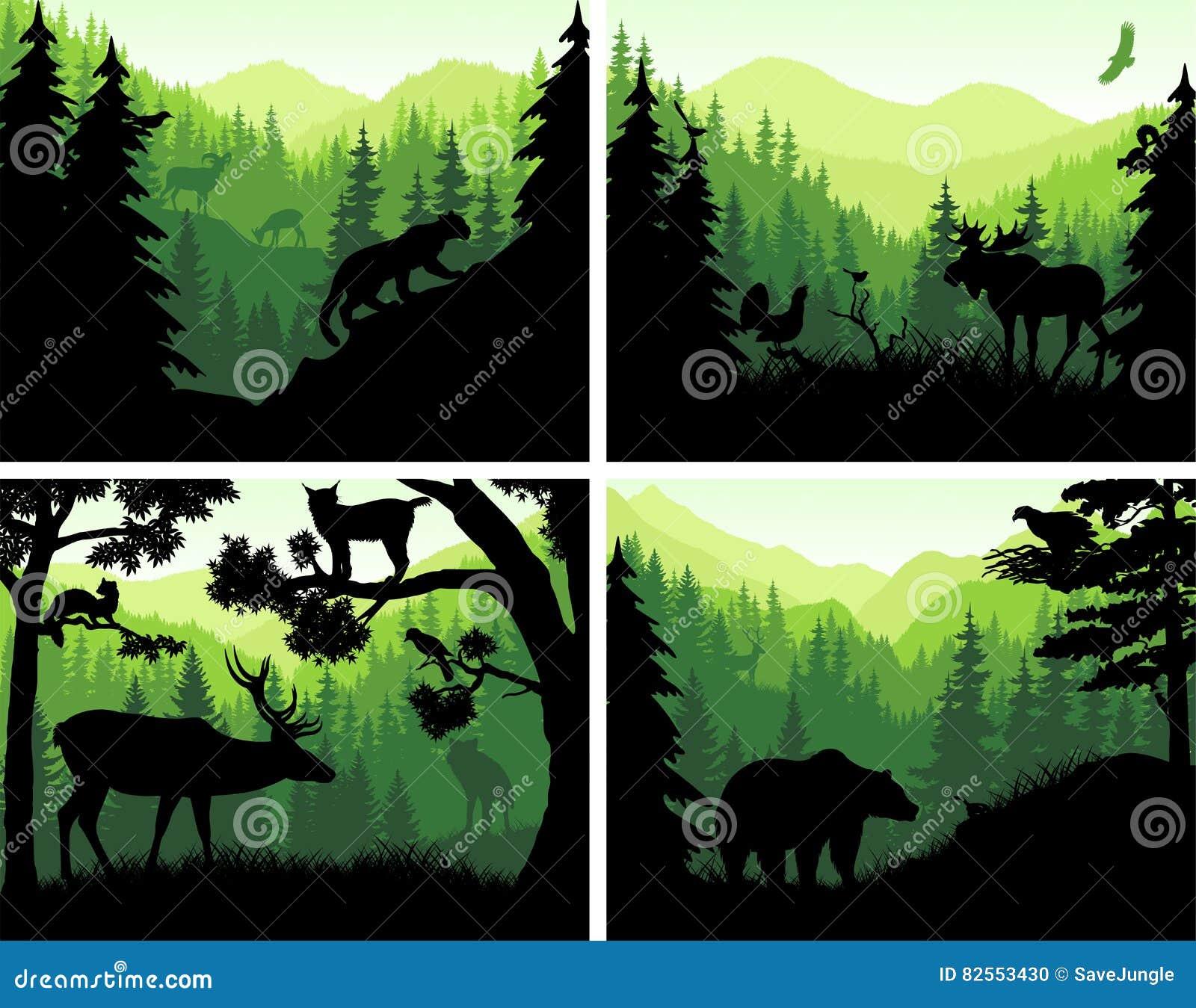 Set wektorowe góra lasu zwierząt sylwetki w zmierzchów szablonach