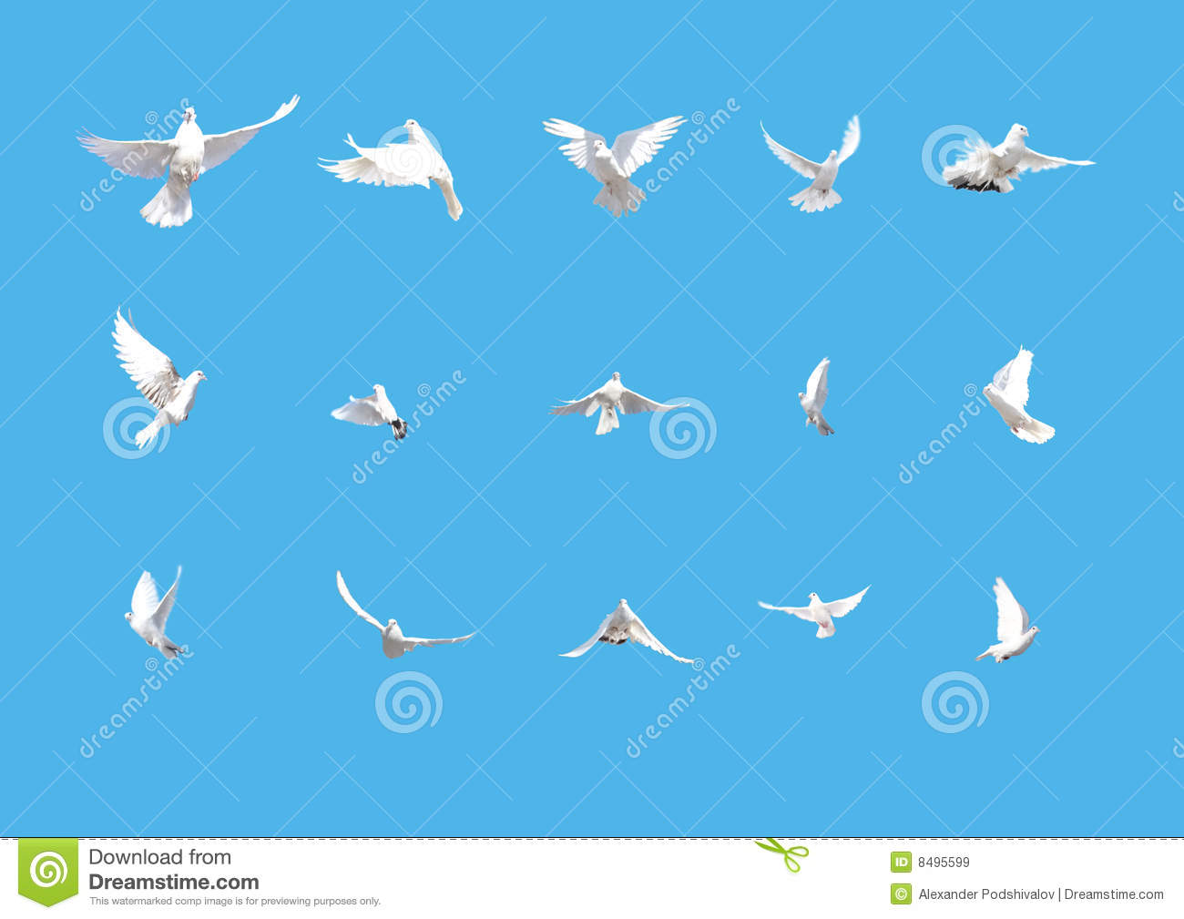 Royalty Free Stock Photo Nature Symbol Image2008285 additionally Stock Illustration Vector Illustration Marine Underwater Scene Cartoon Image49210852 together with Funeral Program Template as well Royalty Free Stock Photo Mint Green Polka Dots Image4912355 besides Stock Illustration Iceberg Infographic Menu Hand Draw Sketch Vector Floating Sea Surface Under Water Illustration Image93086768. on deep blue background design