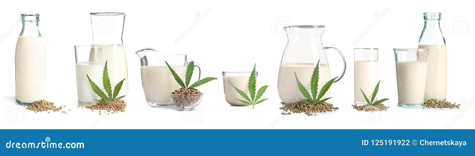 Set z nabiału weganinu konopie mlekiem