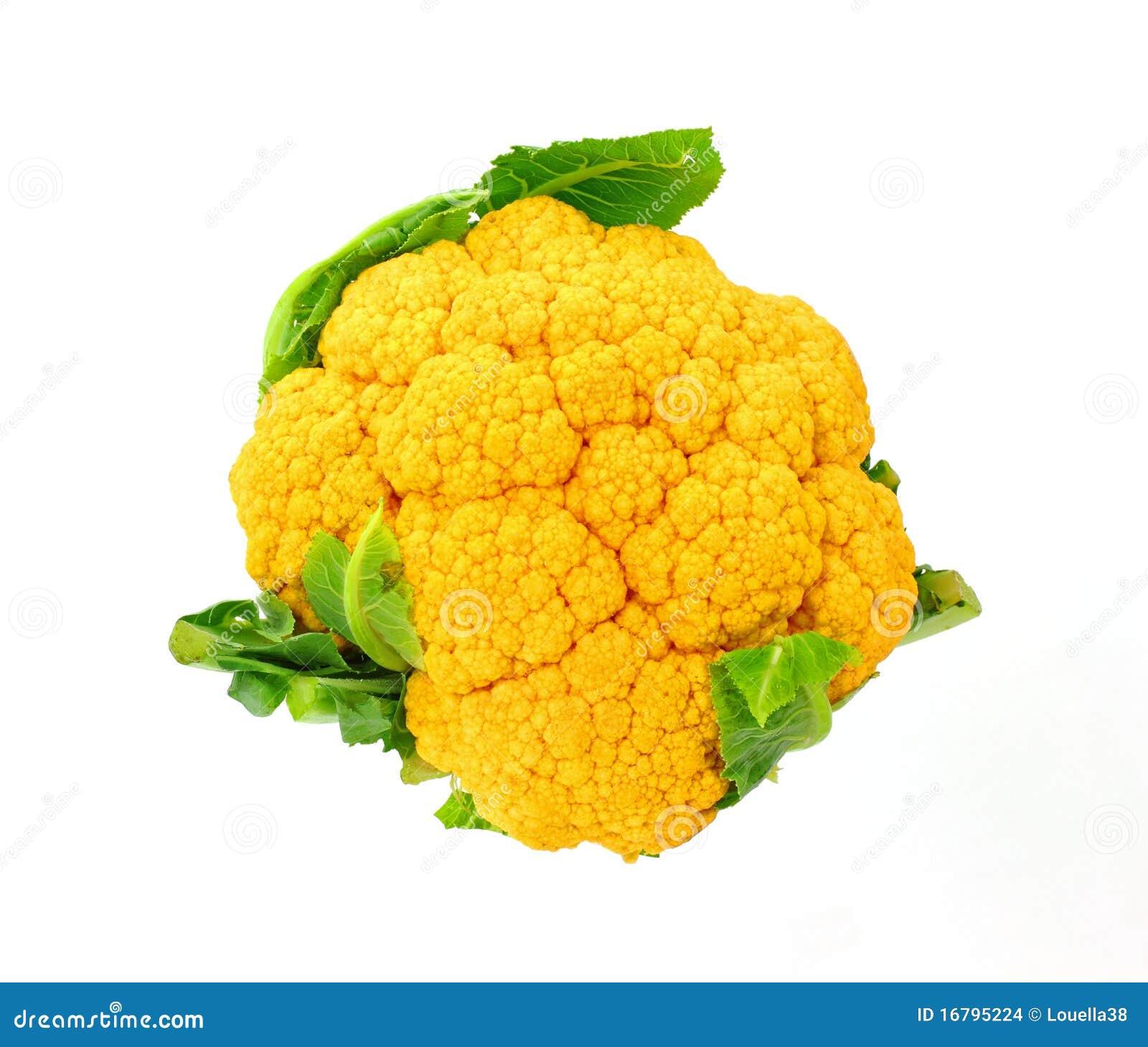 Seul Chou Fleur Orange Photo Stock Image Du Ajoute Groupes 16795224