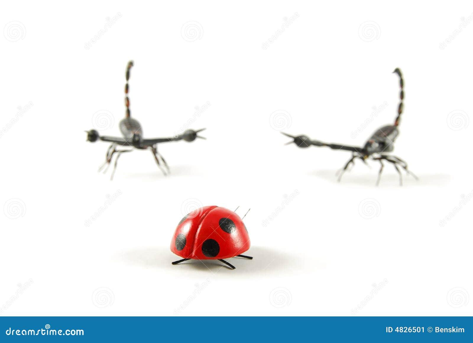 Seul coléoptère