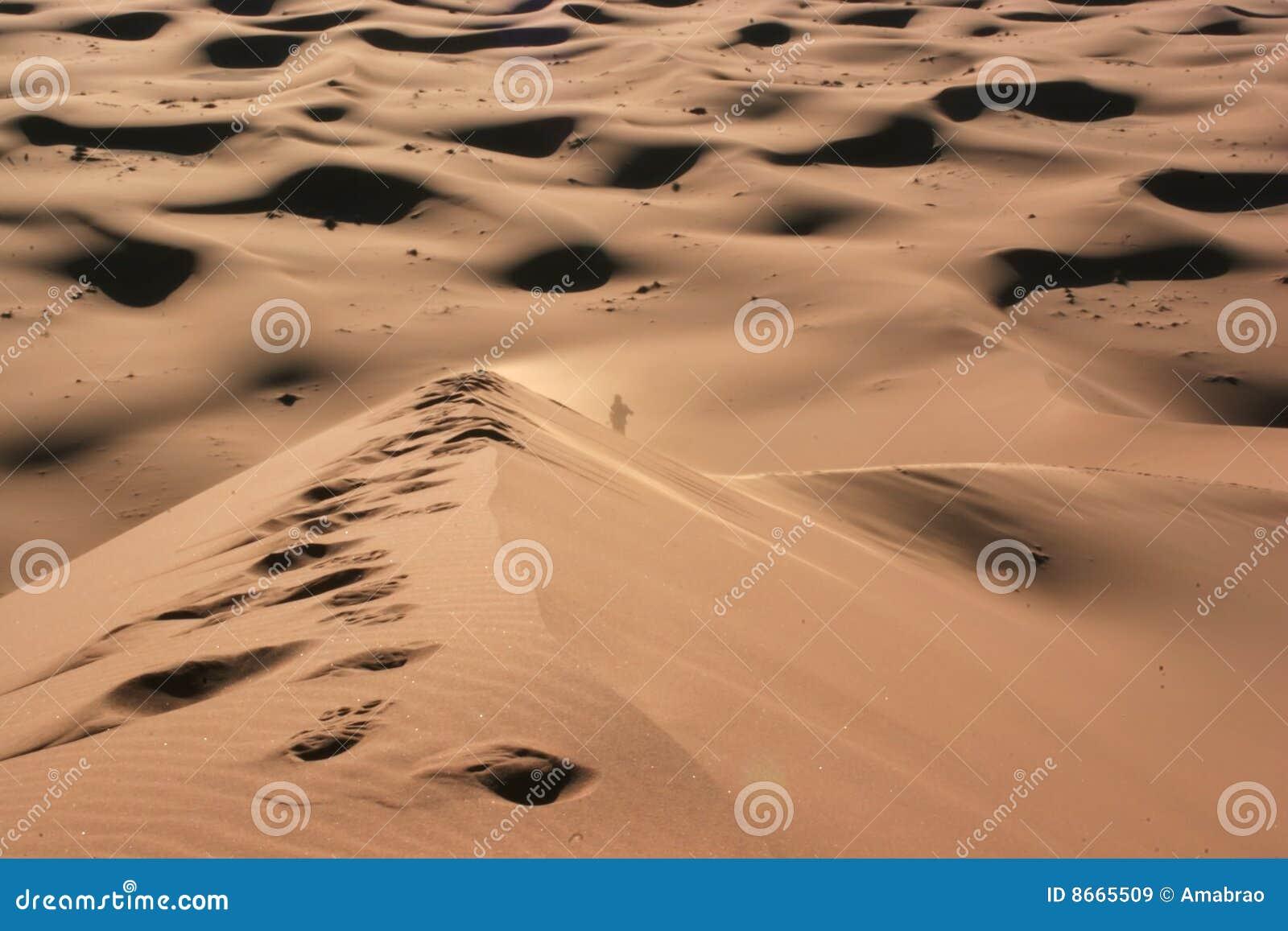 Seul désert