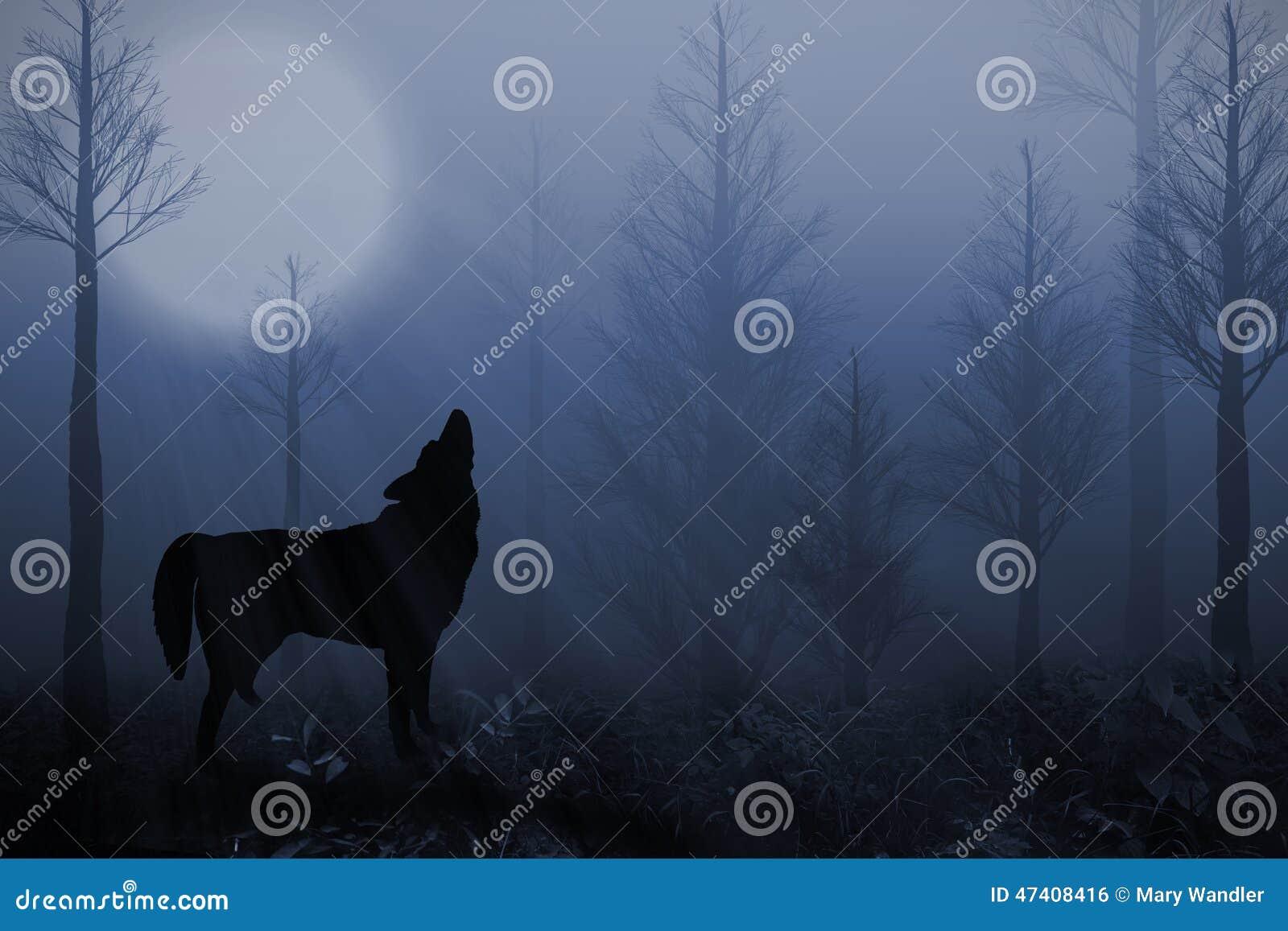 Seul loup