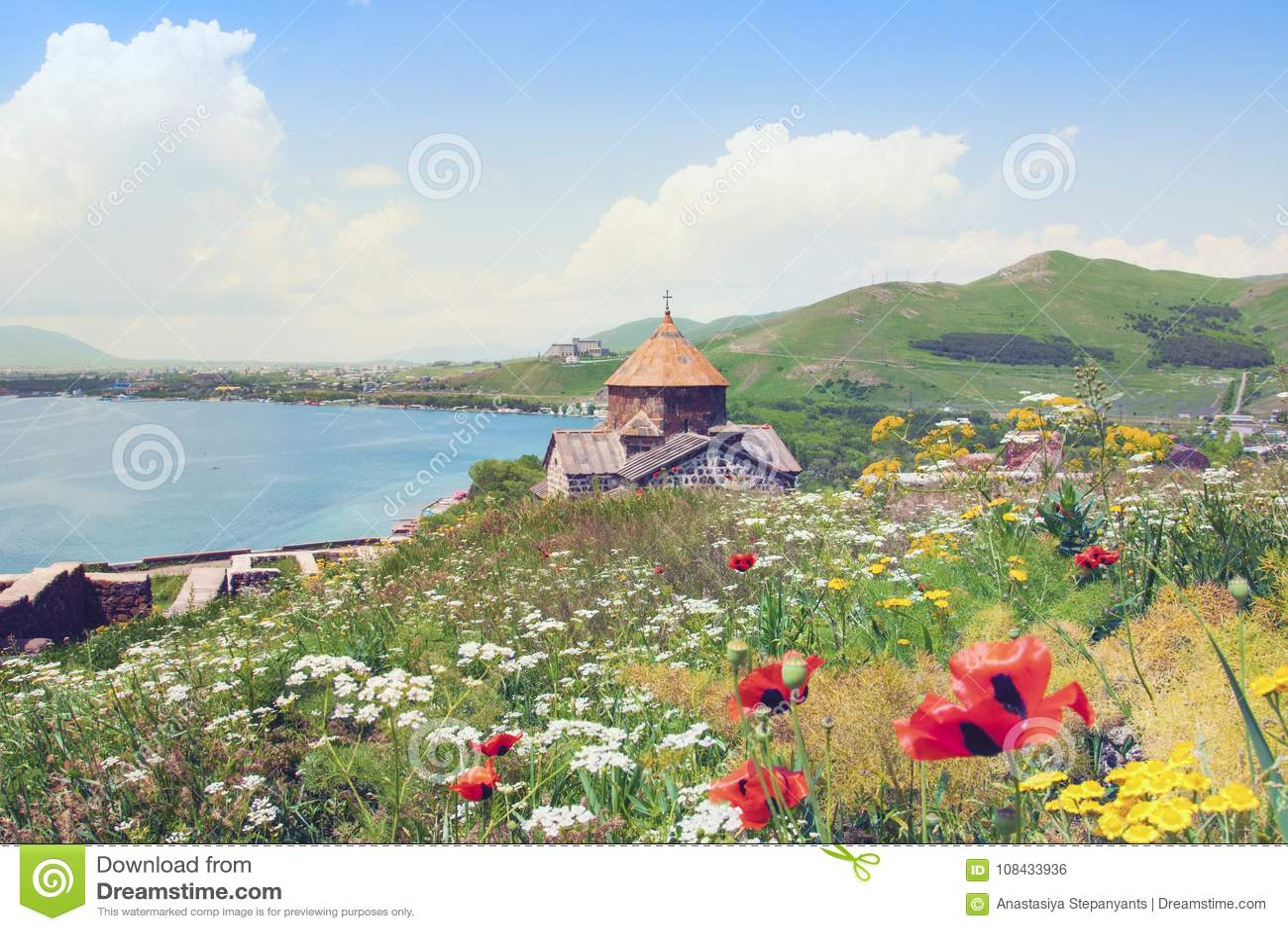 Sevanavank在亚美尼亚观光 塞凡湖、绿色山和天空看法  与黄色和白花的开花的领域