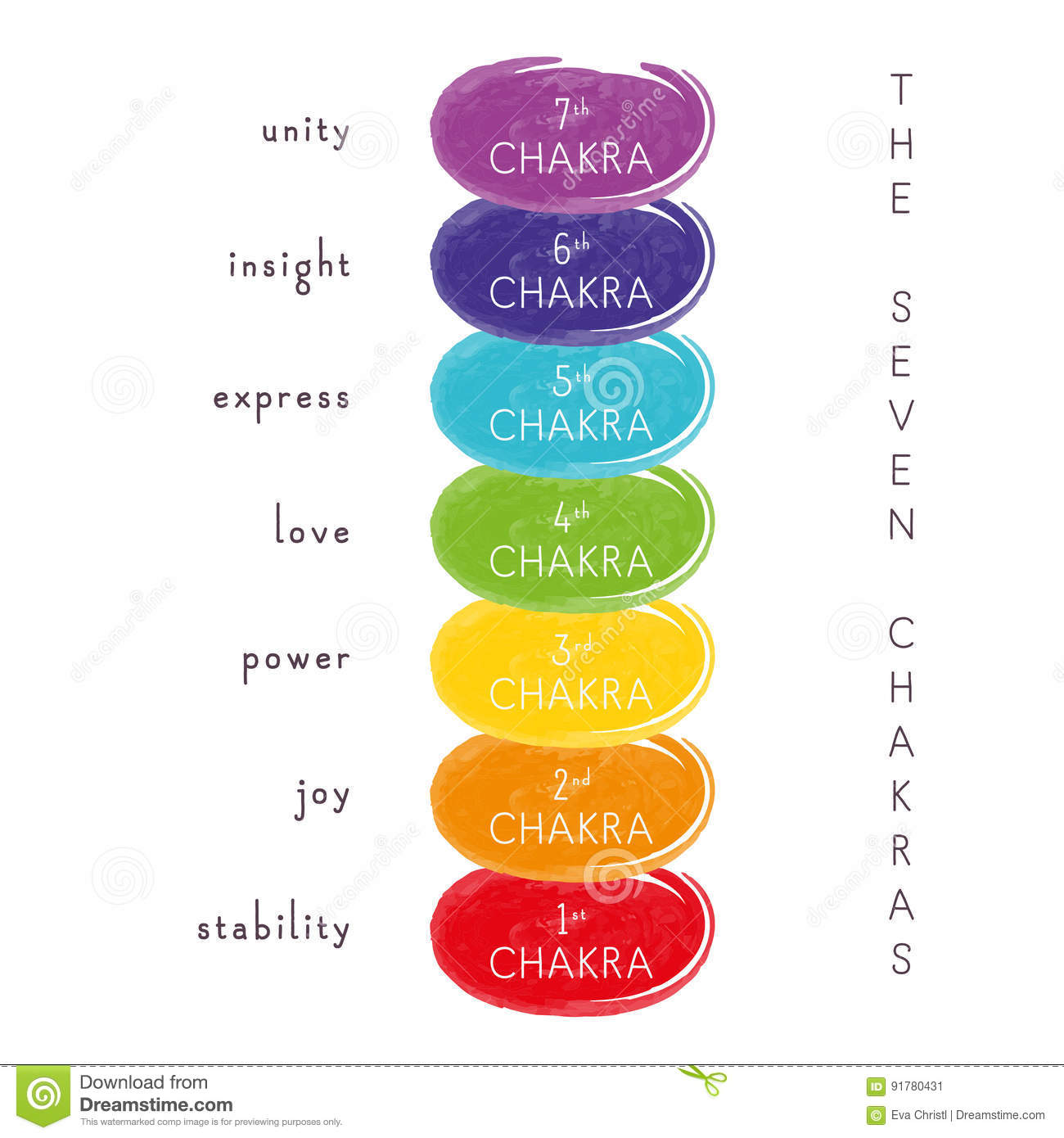 The Seven Chakras stock vector  Illustration of expressive