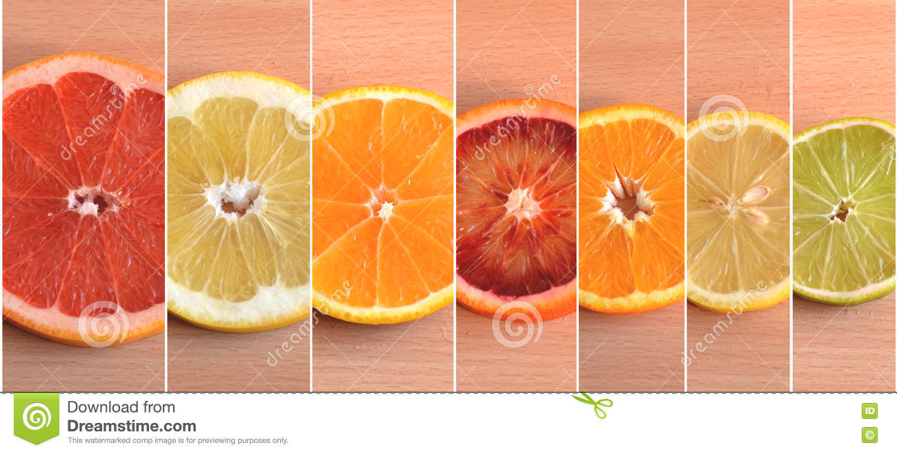Seven Different Types Of Citrus Arranged By Size Stock ...