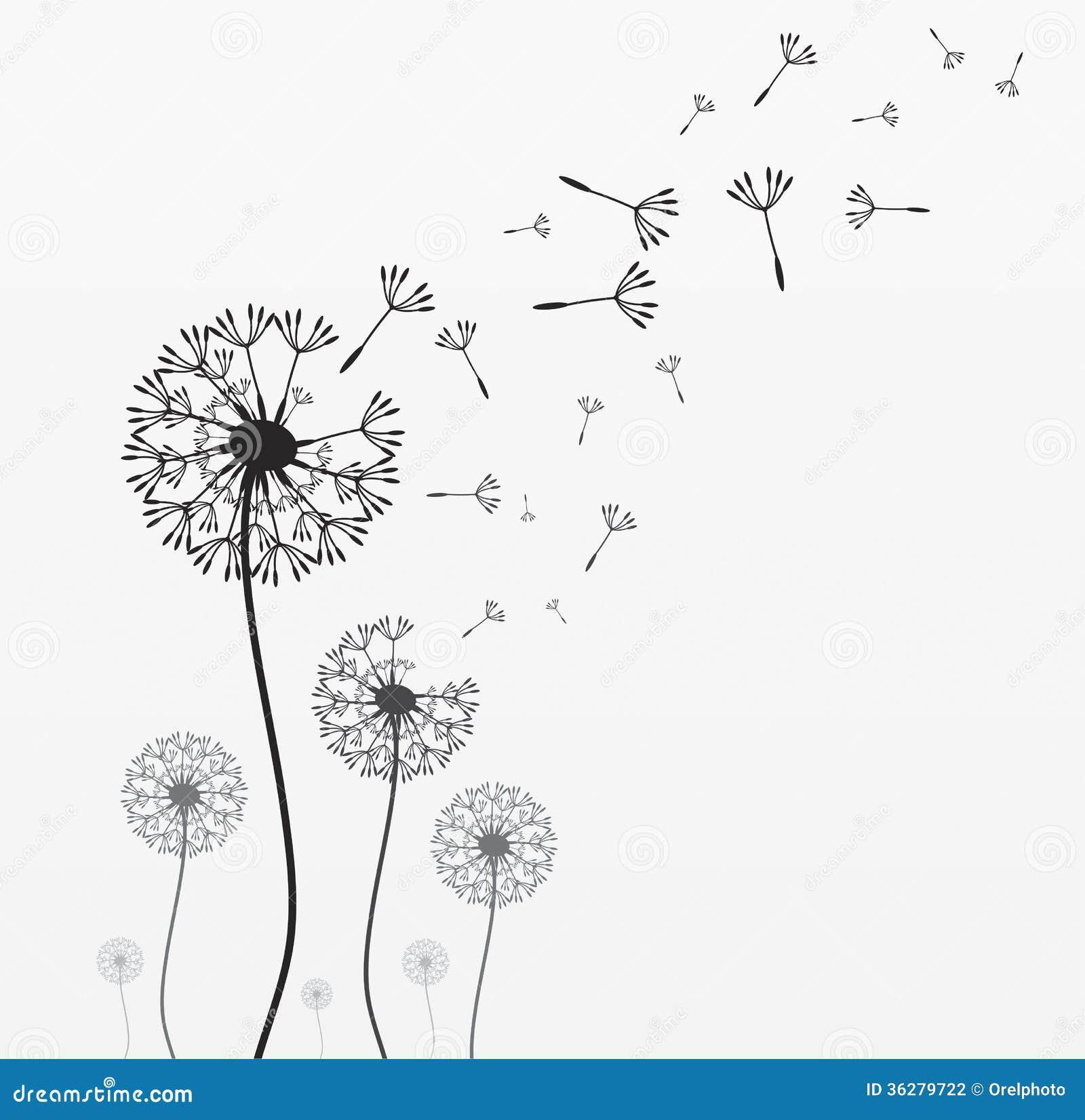 Blowing dandelion clip art - photo#14