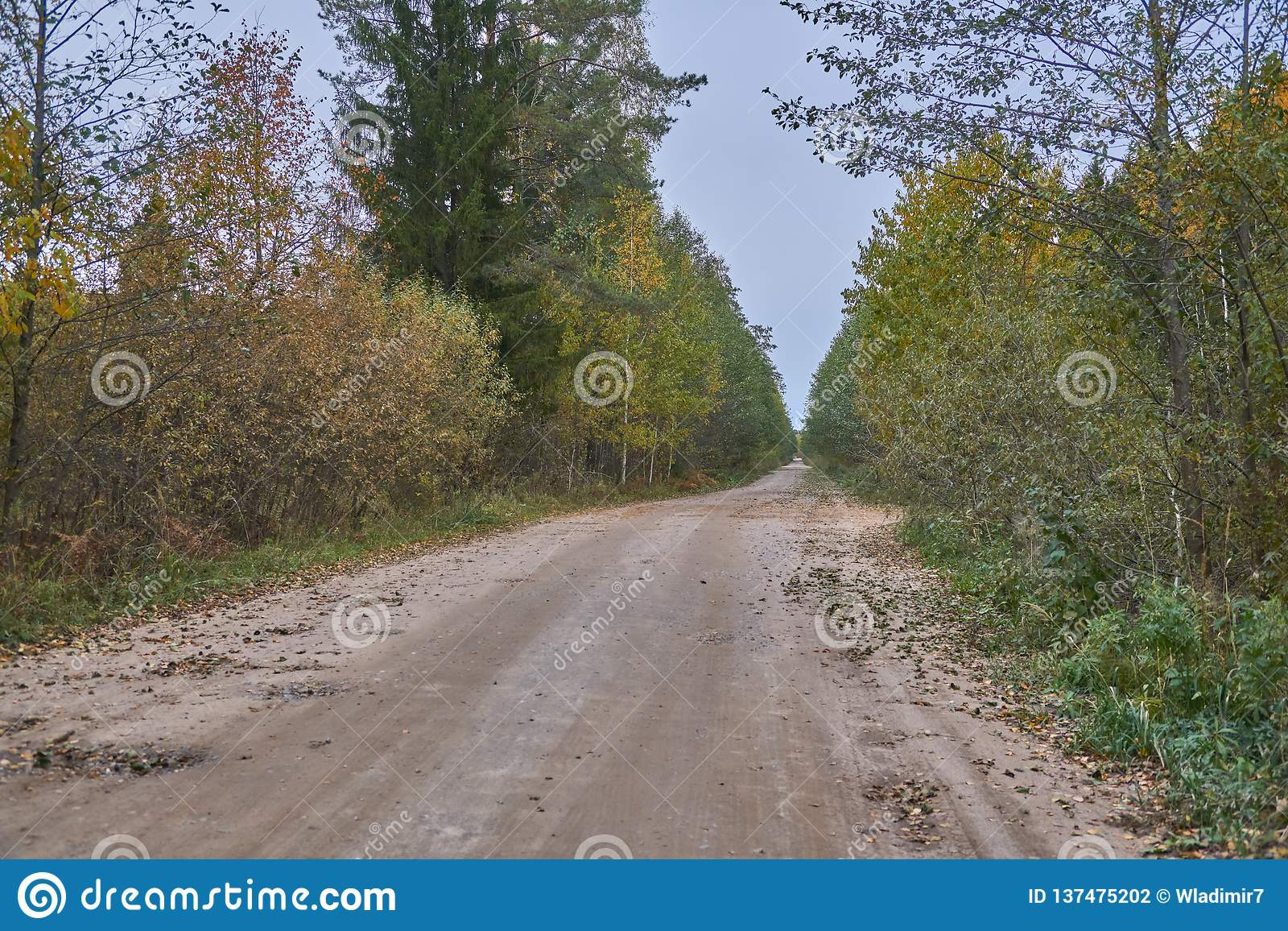 Country roads in Russia stock photo. Image of altai ...