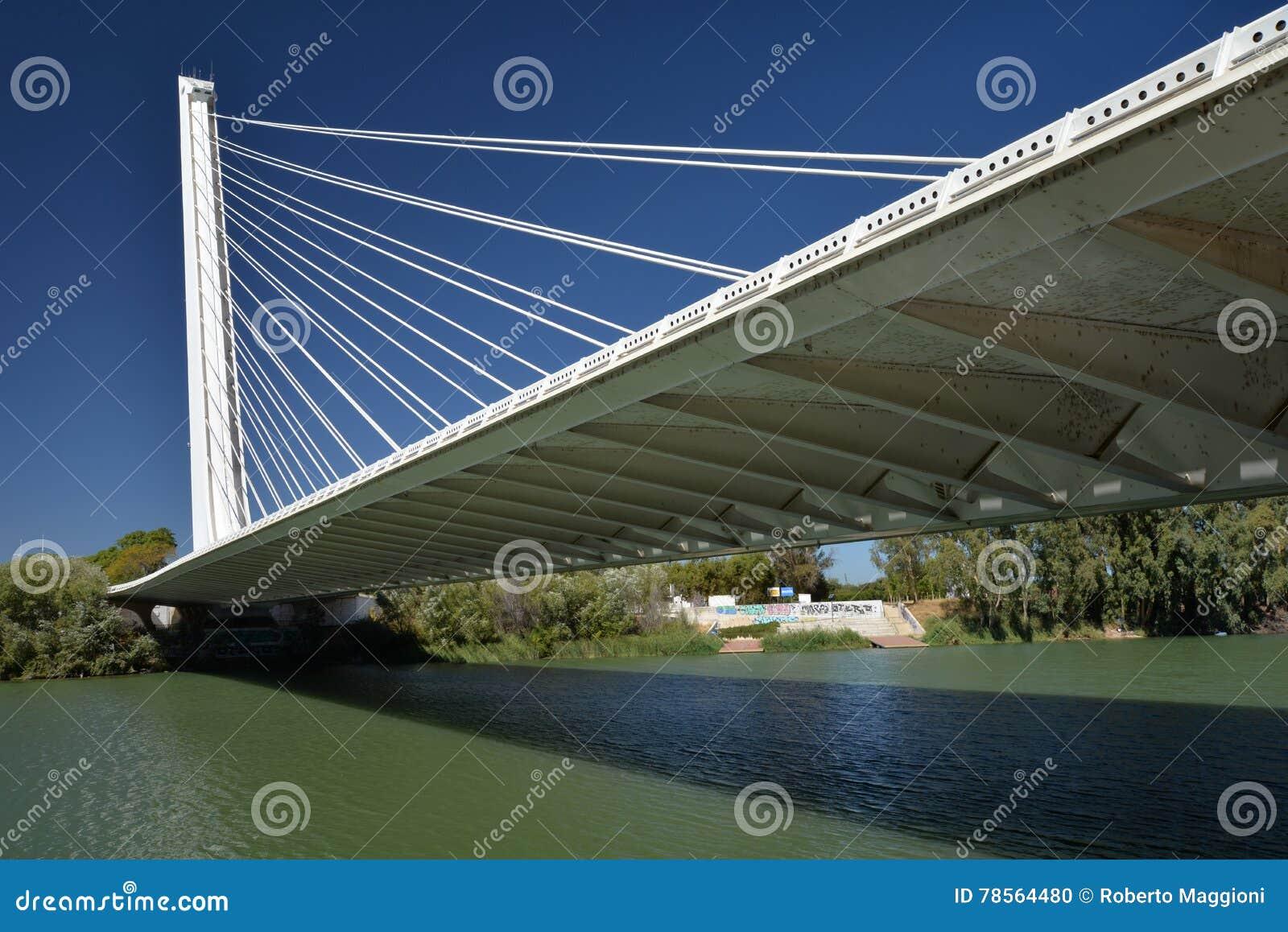 Seville, Andalusia, Spain. Alamillo bridge by architect Santiago Calatrava