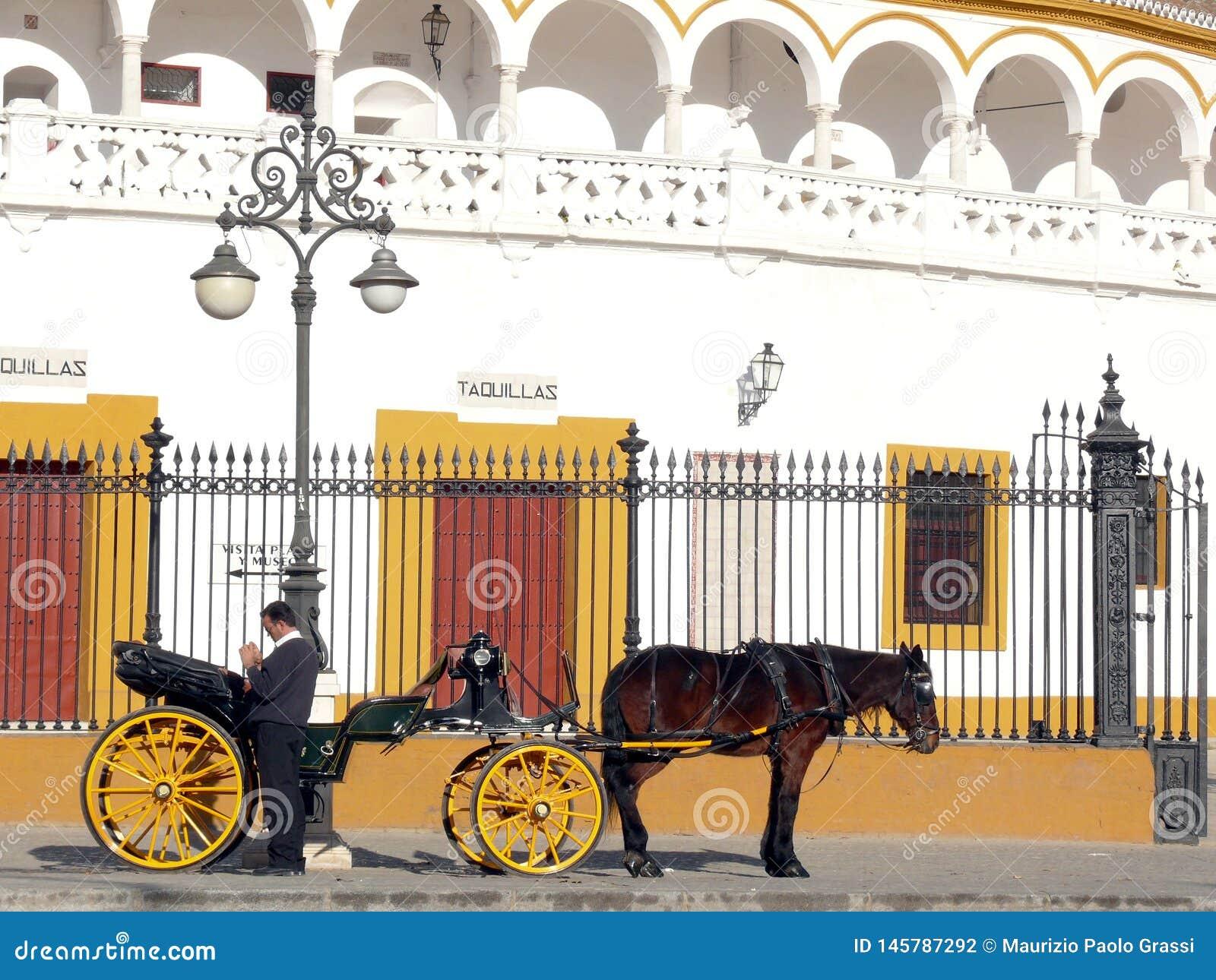 Sevillla, Hiszpania, 01/02/2007 Fracht z koniem i stangretem