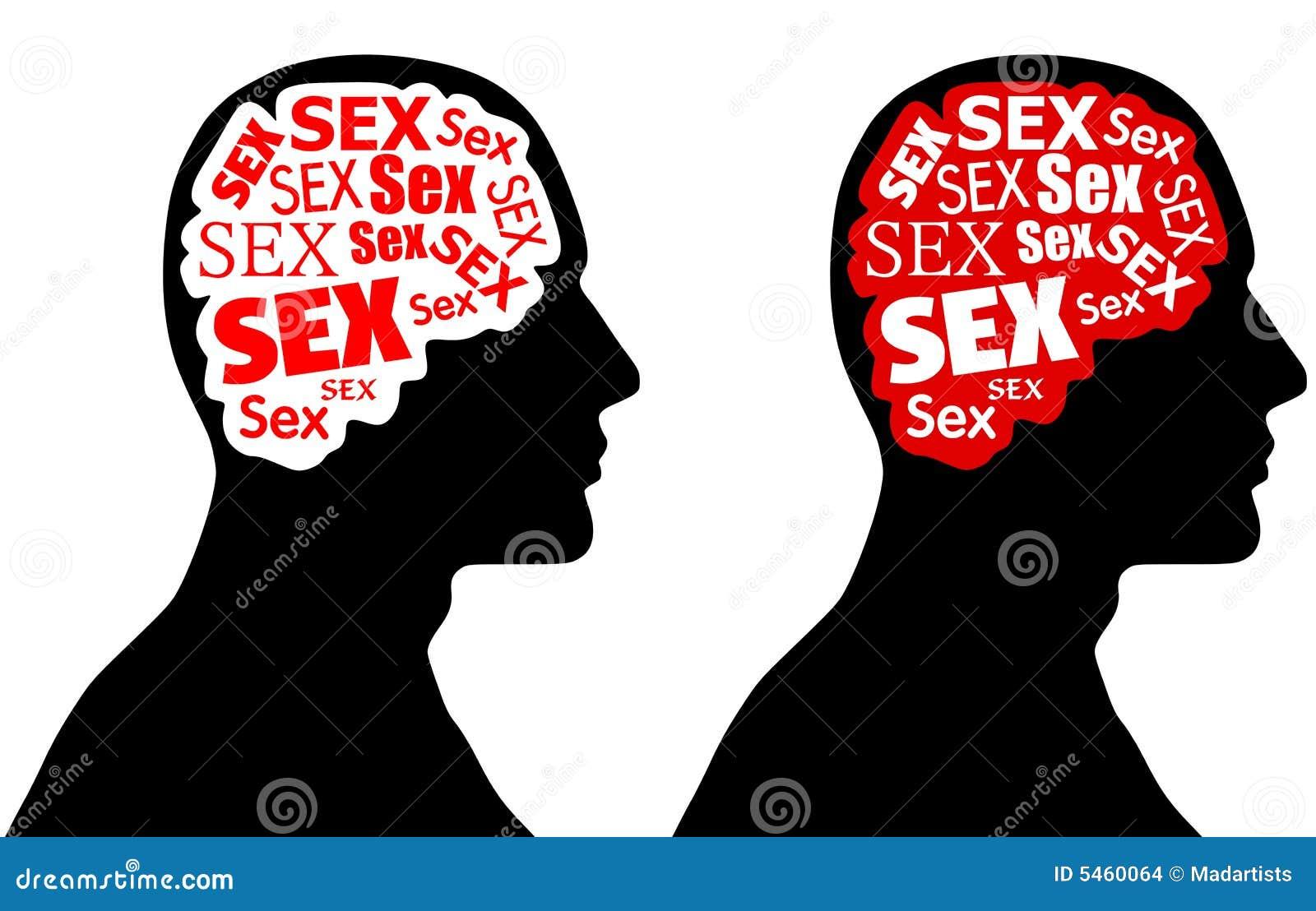 El sexo ocupa en el cerebro