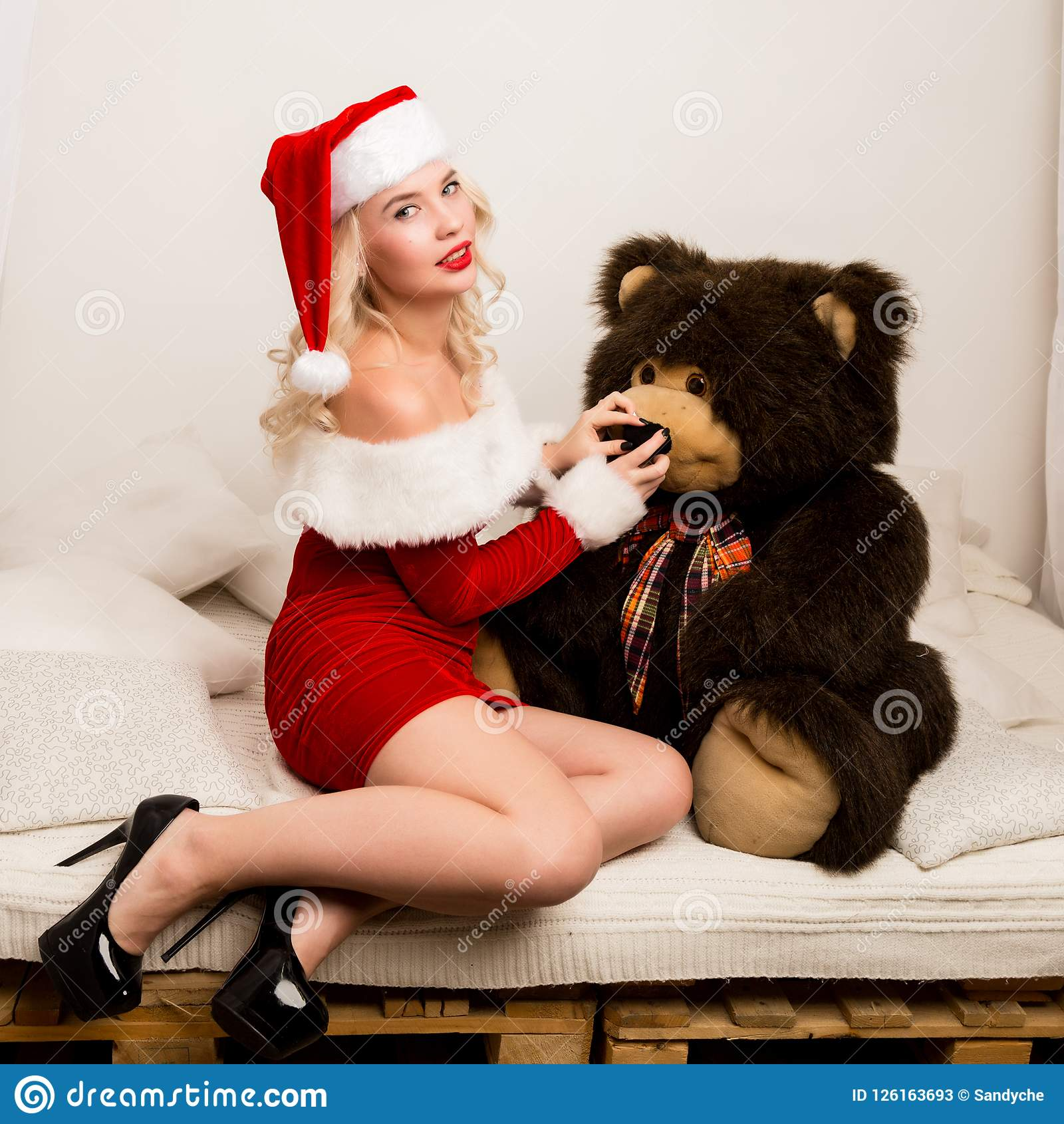 cock bear girl hot teddy
