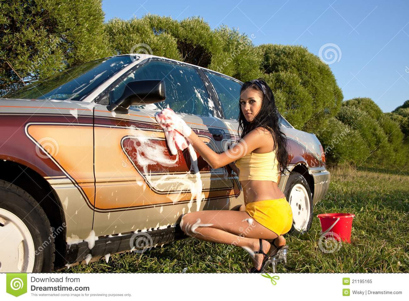 girl washing a car - pin-up style