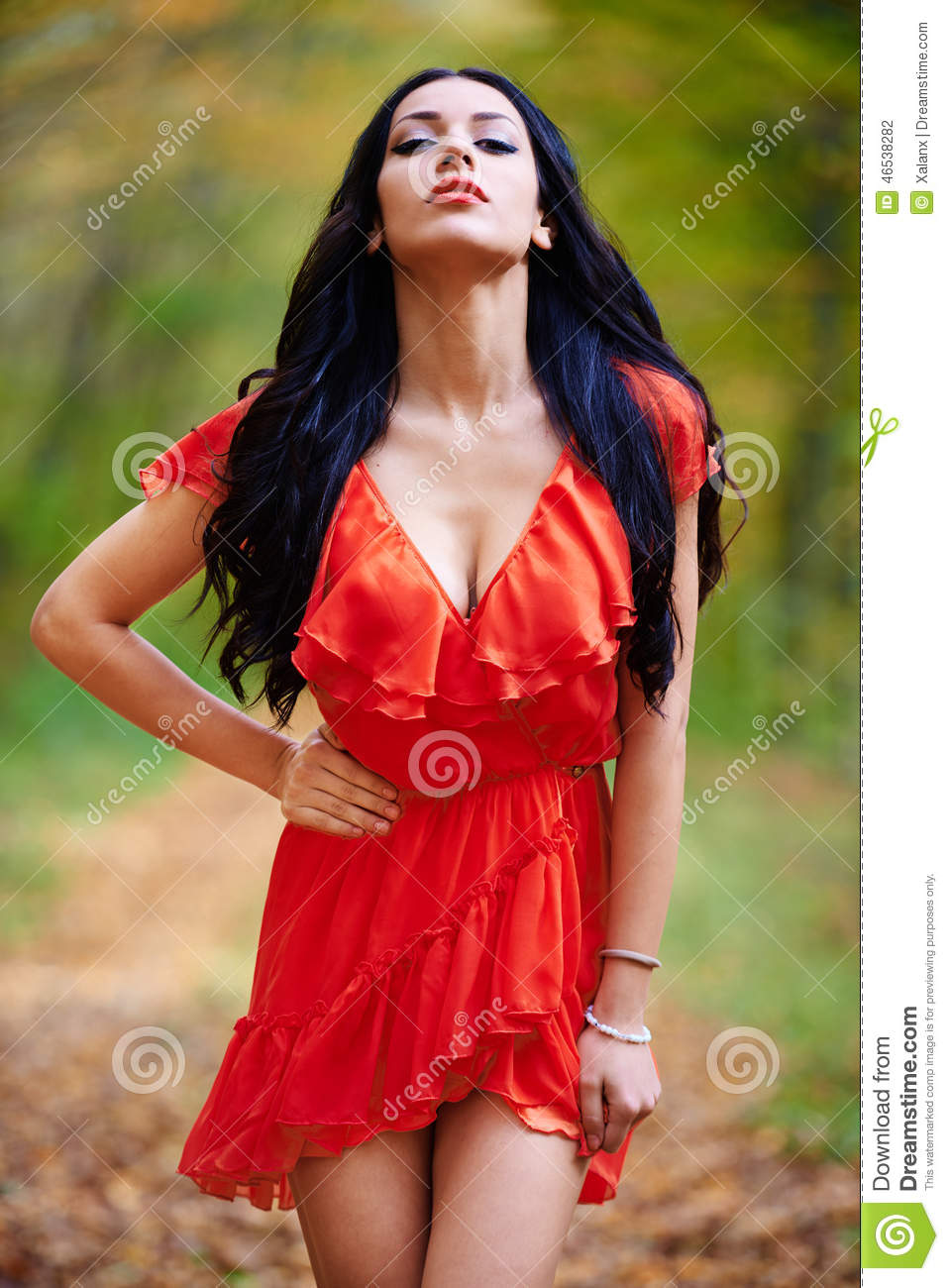 lady in red dress stock photo image 46538282. Black Bedroom Furniture Sets. Home Design Ideas