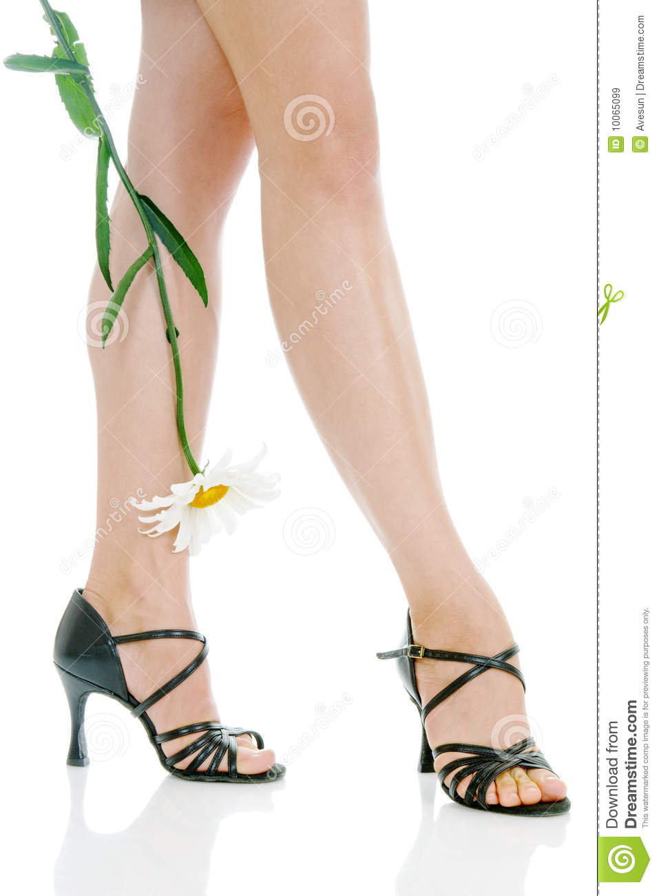 legs with camomile