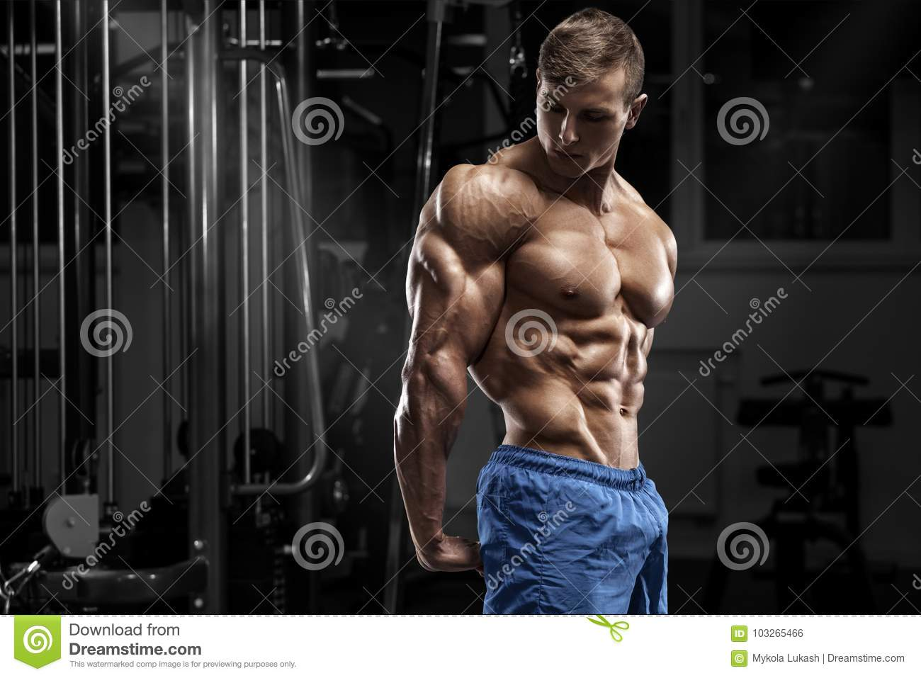 muscular man posing in gym, shaped abdominal, showing triceps. Strong male naked torso abs, working out