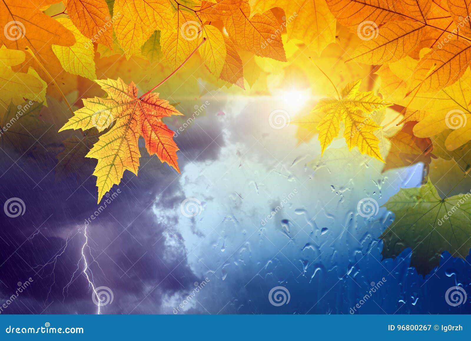 Sezonowy jesieni tło, spadek prognozy pogody pojęcie