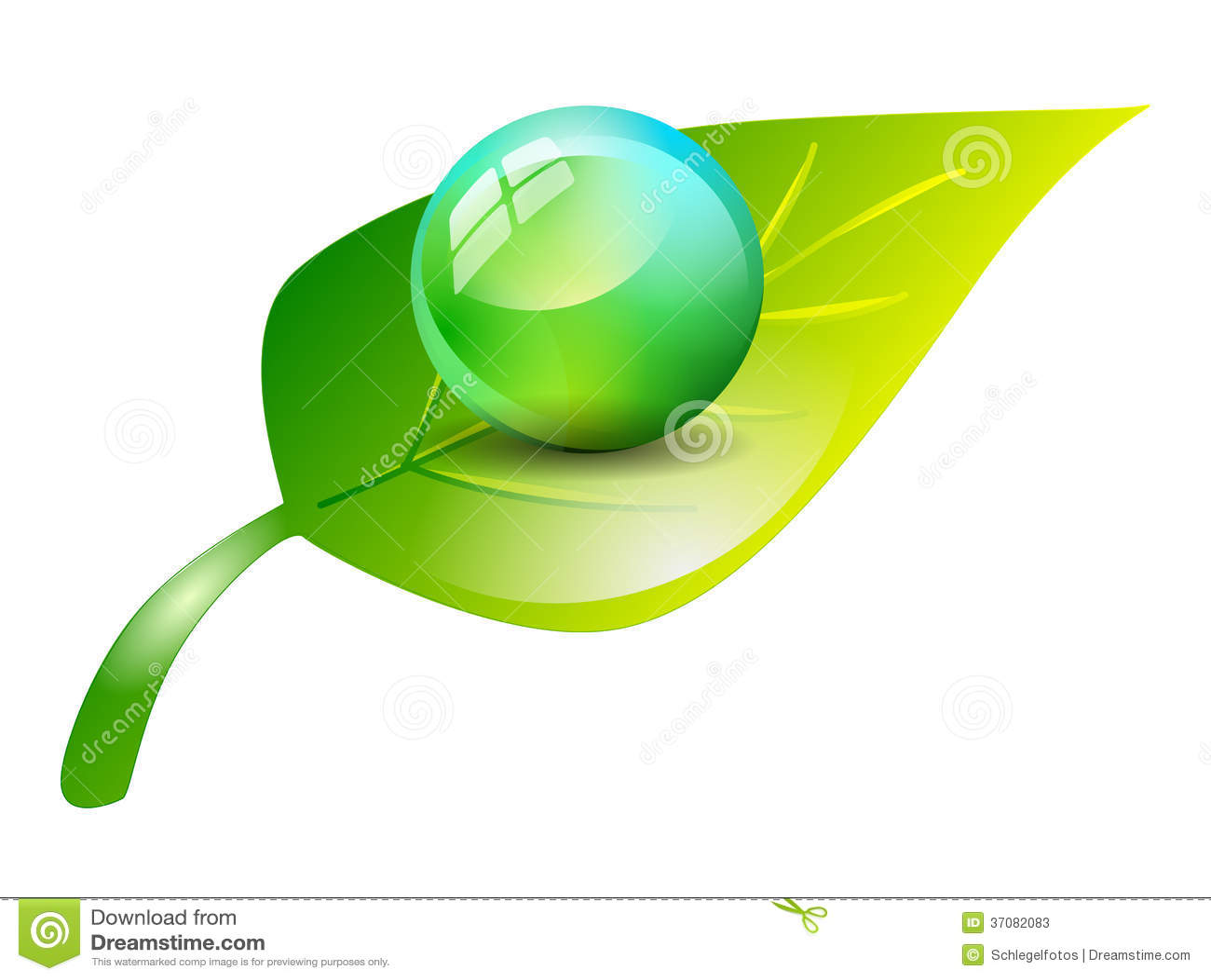 Download Sfera Na Zielonym Liściu Odizolowywającym Ilustracji - Ilustracja złożonej z zdrowy, liść: 37082083