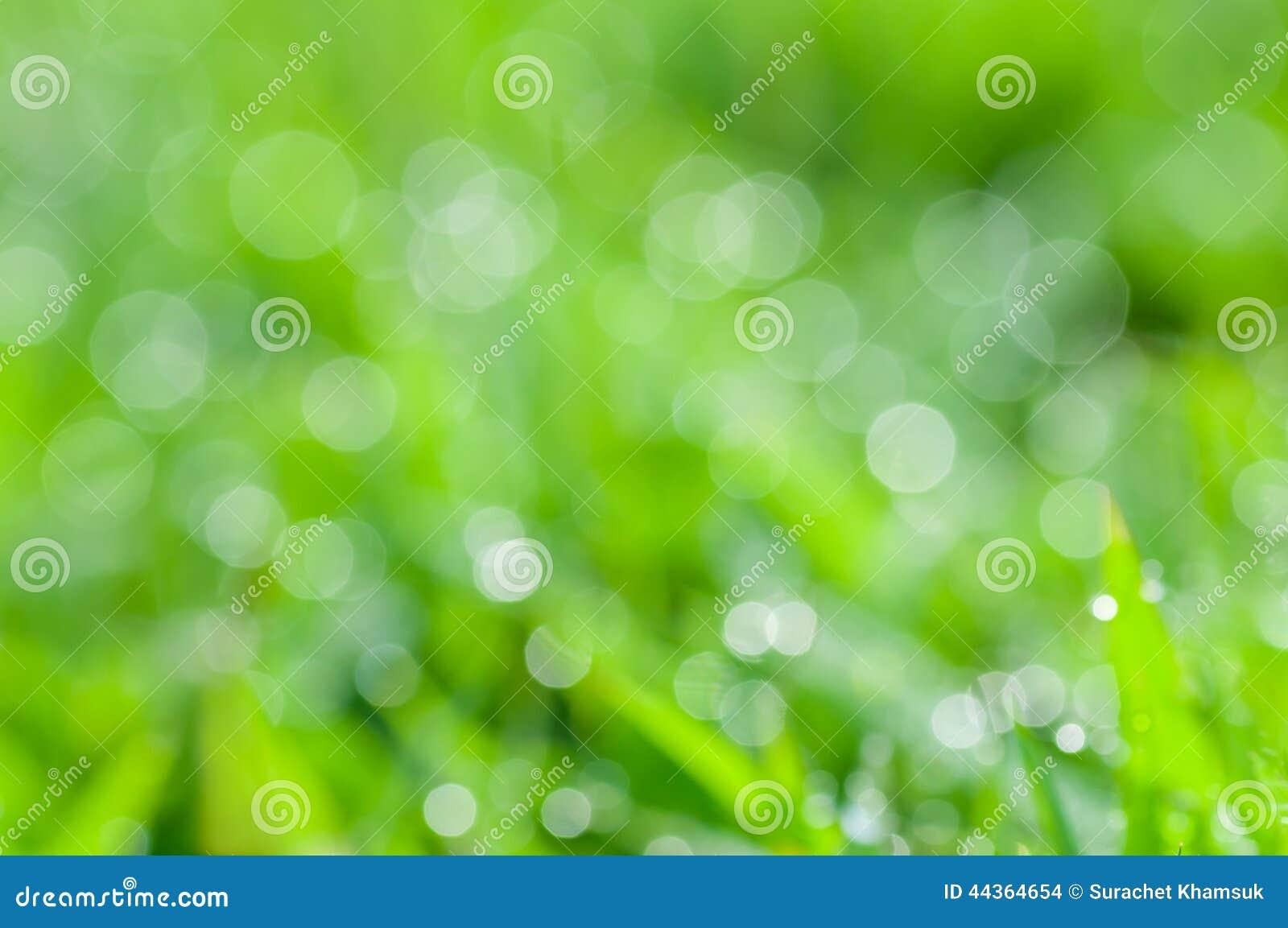 Sfondo naturale verde fresco astratto Defocused