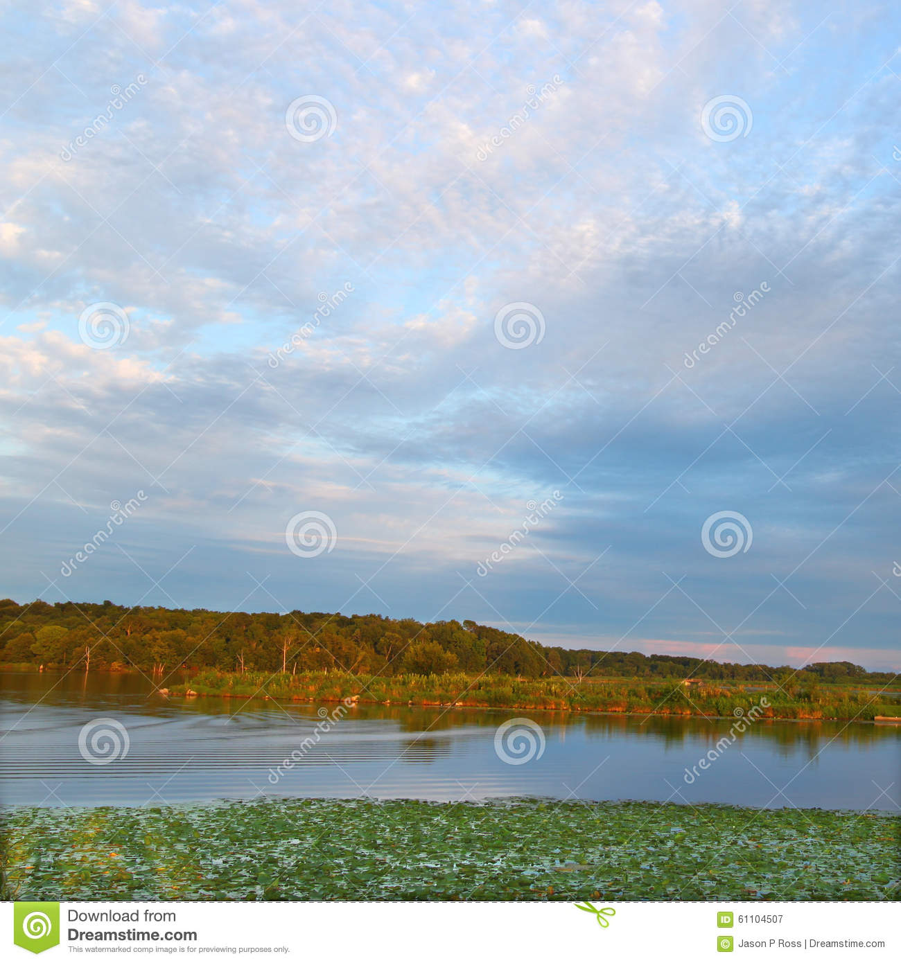 Illinois Map - Fishing Locations - Lakes, Streams & Ponds ...