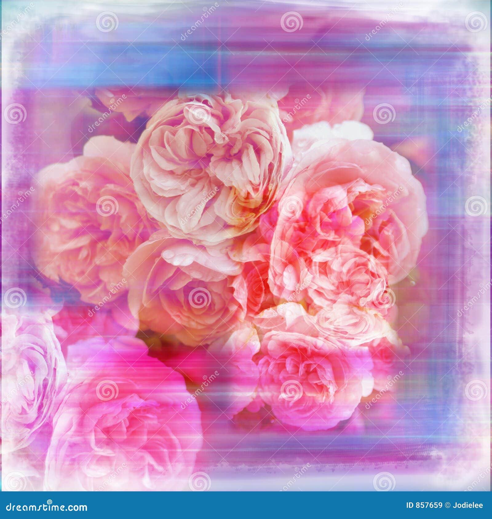 Shabby μαλακό watercolor λευκώματος αποκομμάτων σελίδων κήπων λουλουδιών