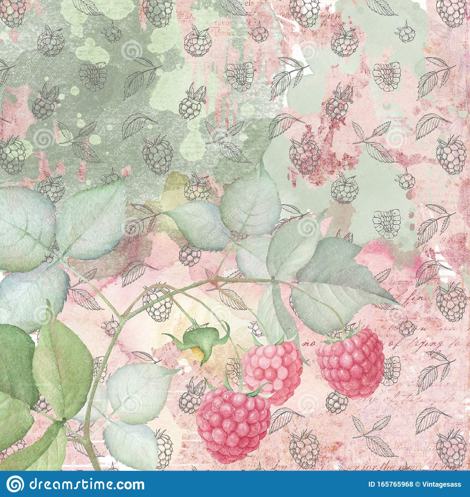 Shabby Chic Vintage Raspberry Collage Background Vintage Floral Chalkboard Texture Berries Stock Illustration Illustration Of Floral Berries 165765968