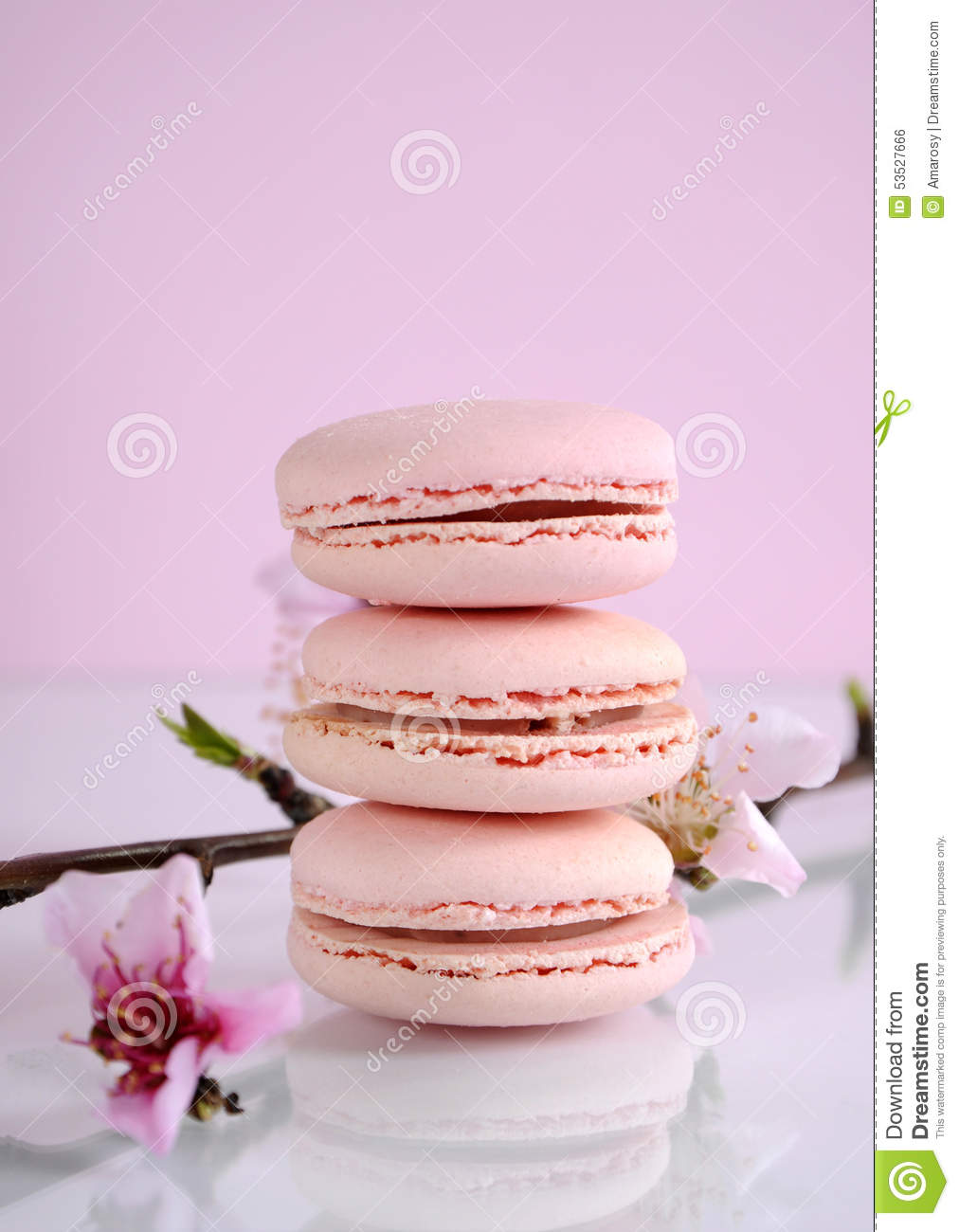 shabby chic vintage style pink macarons stock photo image of chic french 53527666. Black Bedroom Furniture Sets. Home Design Ideas