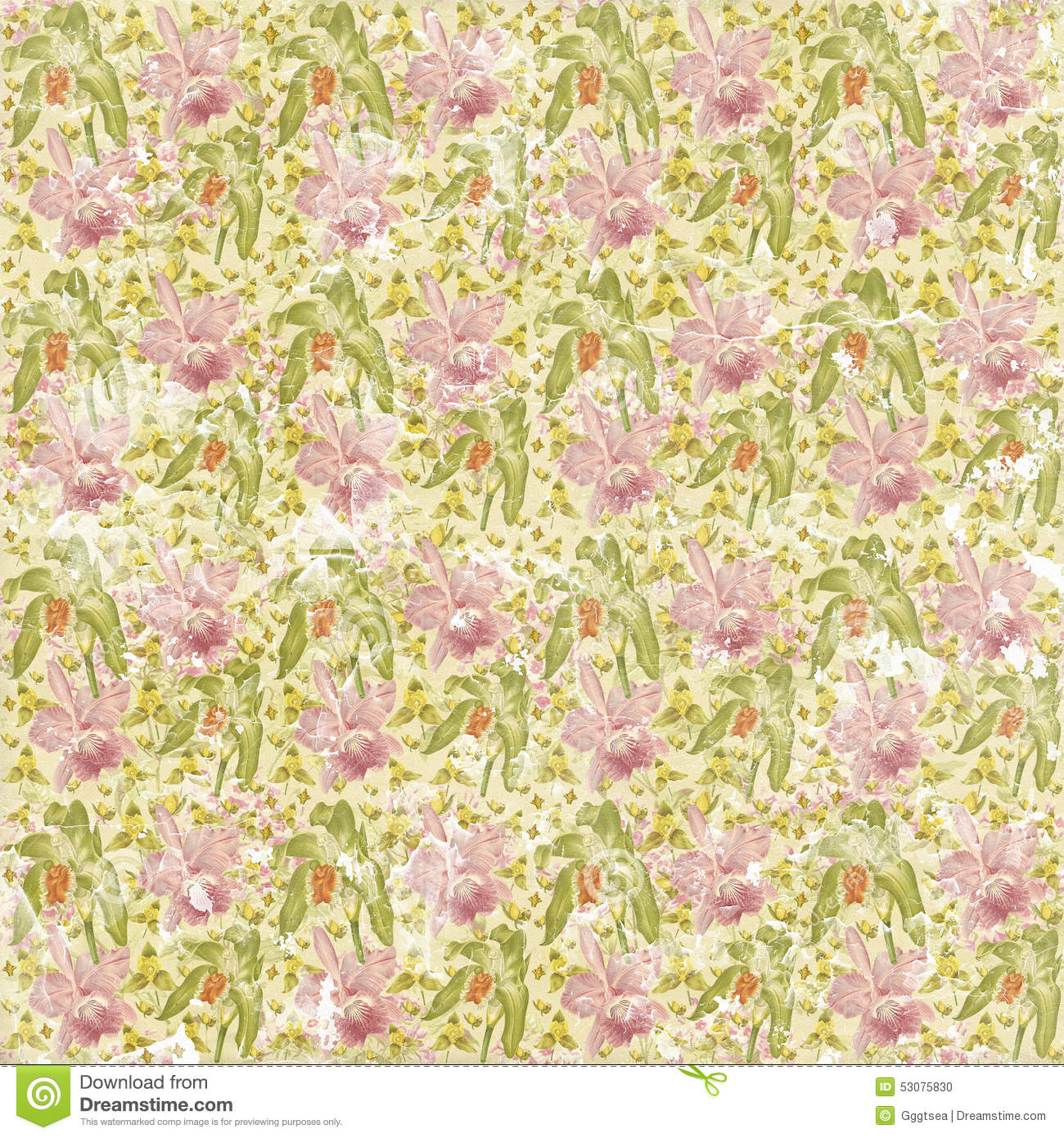 Shabby Faded Seamless Floral Pattern Wallpaper Stock Photo - Image ...