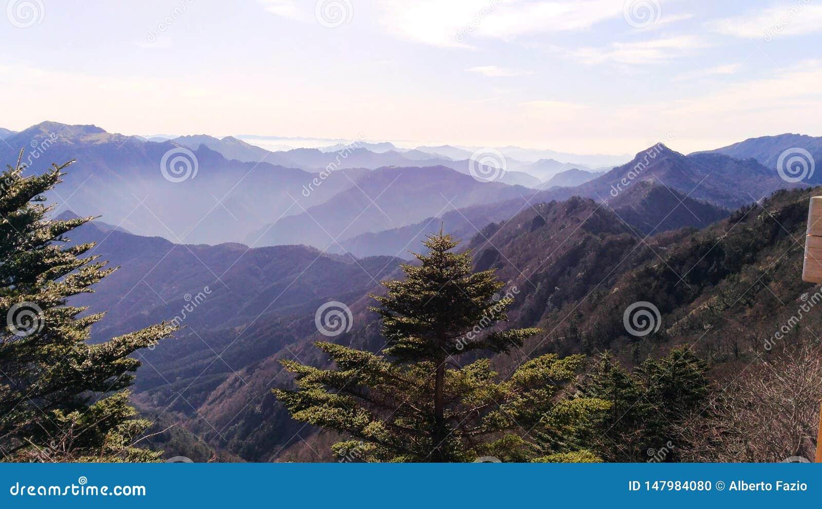 Shaded japanese mountains