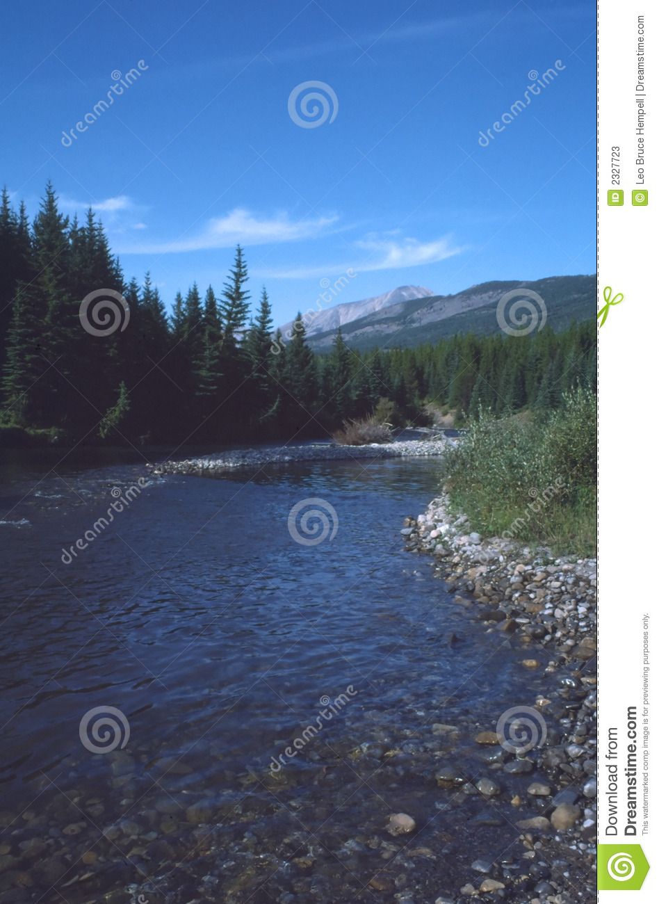 Shaded Rocky Mountain River, British Columbia