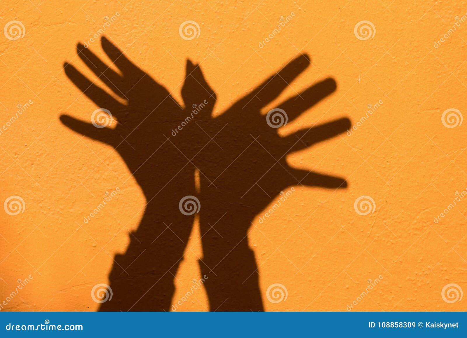 Shadow of hand symbol mean animal like a Bird on Orange wall background