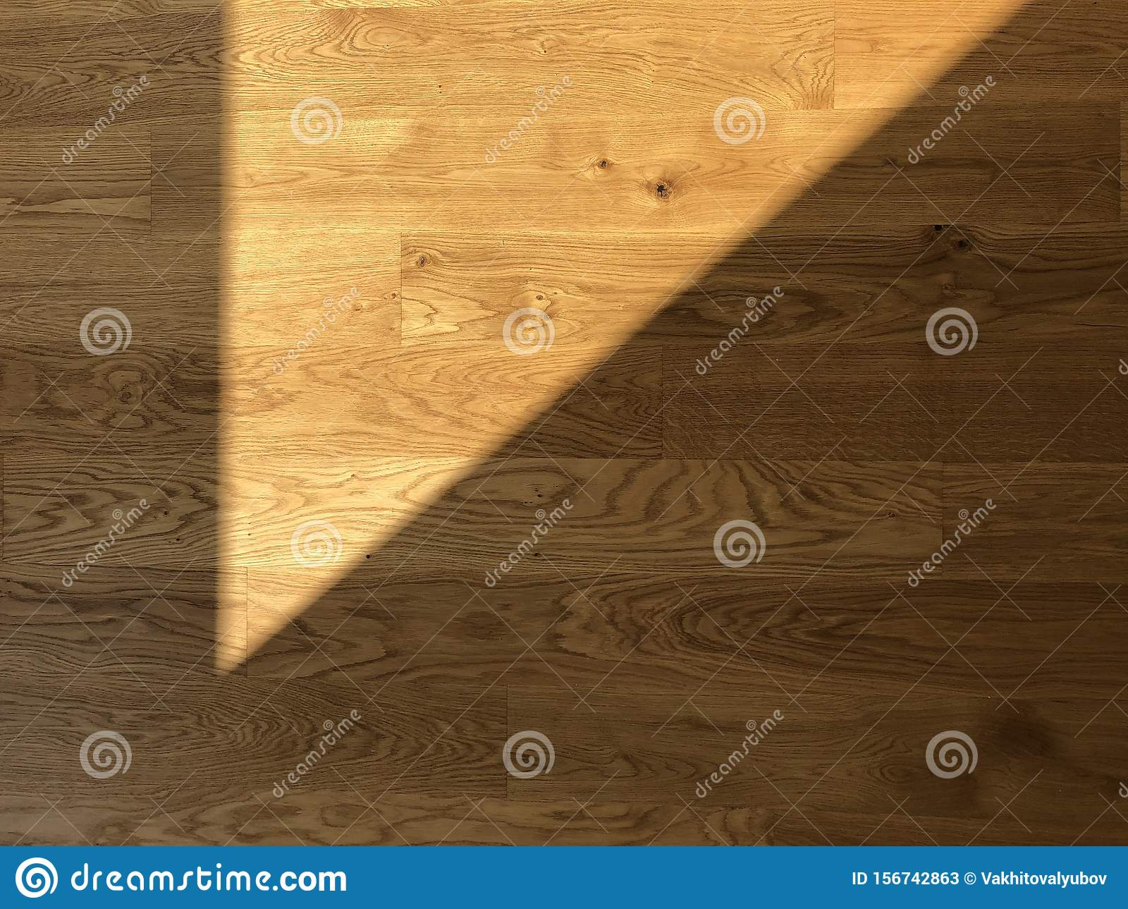 Shadow of the sunlight on parquet floor.