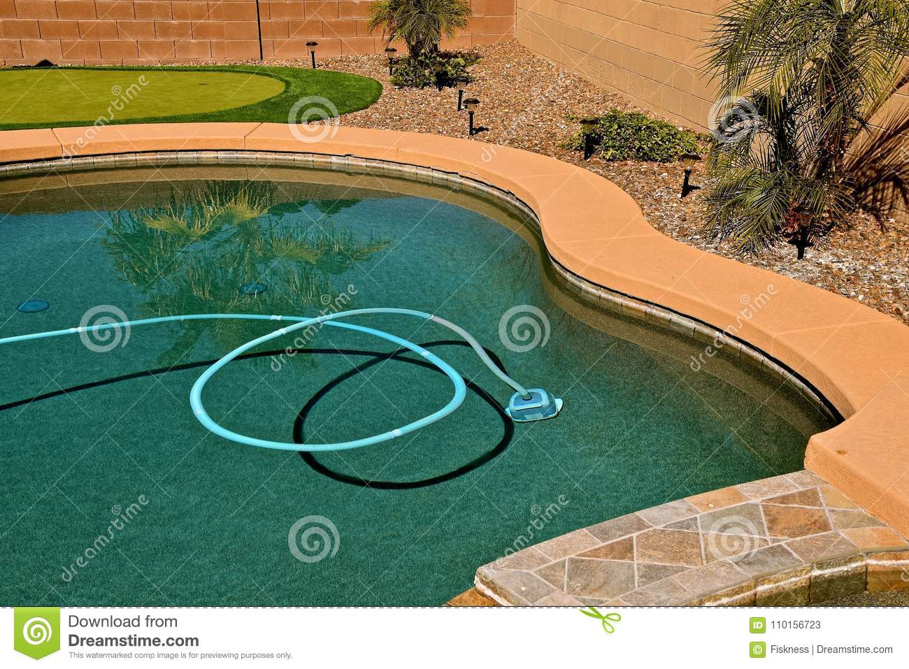 Shadow Of A Vacuum Hose In A Swimming Pool Stock Image ...