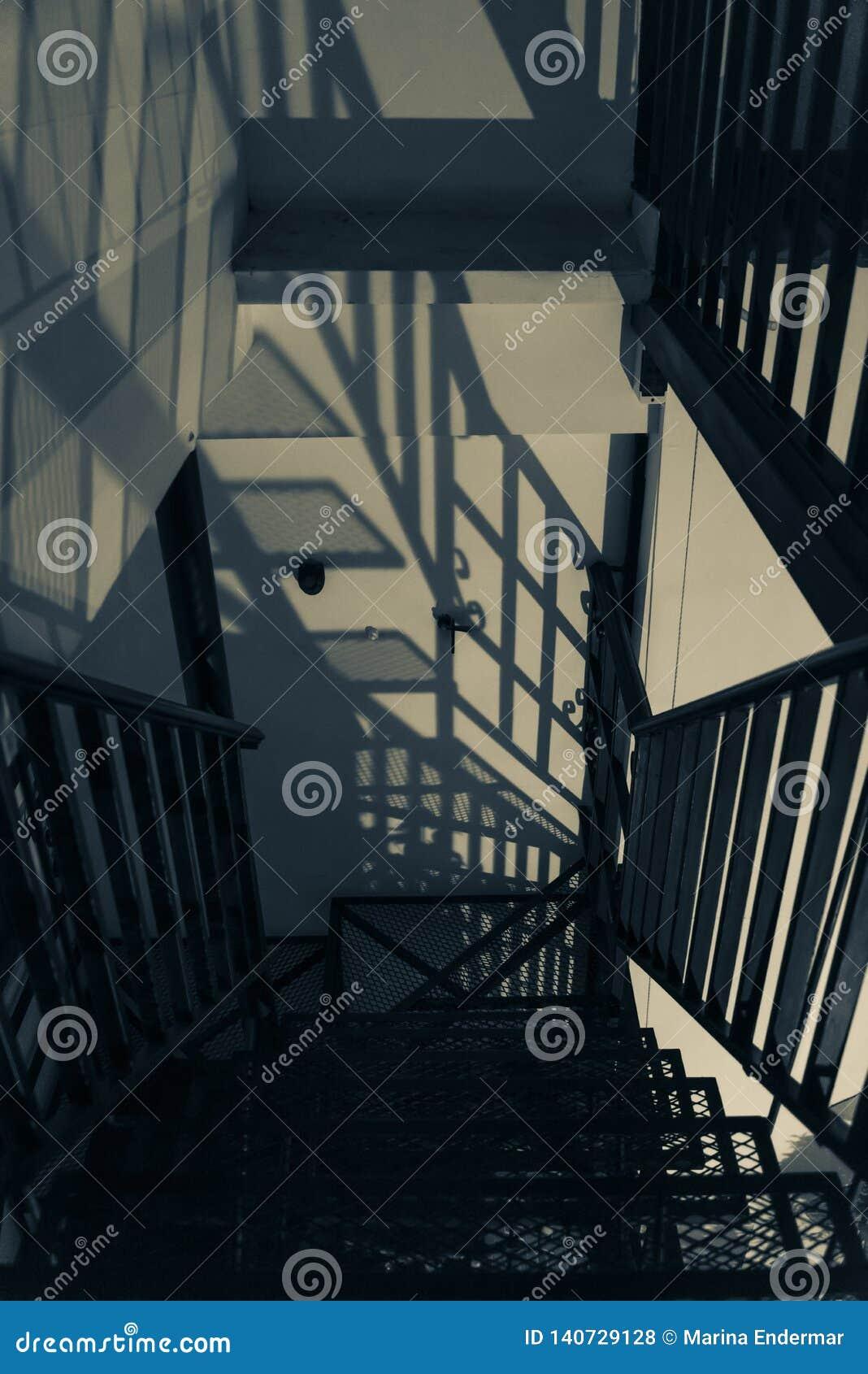 Shadows trappa