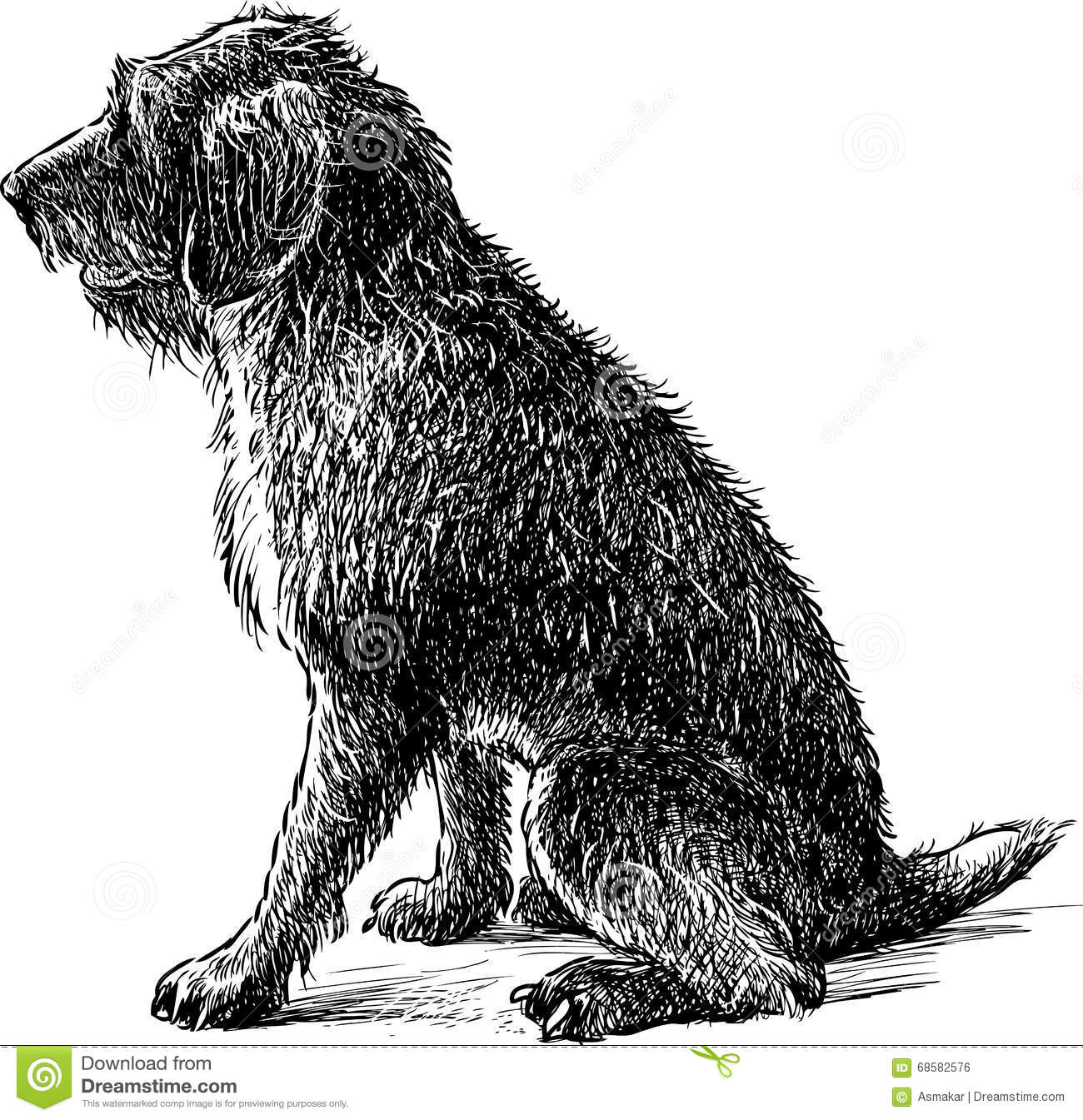 how to draw a shaggy dog