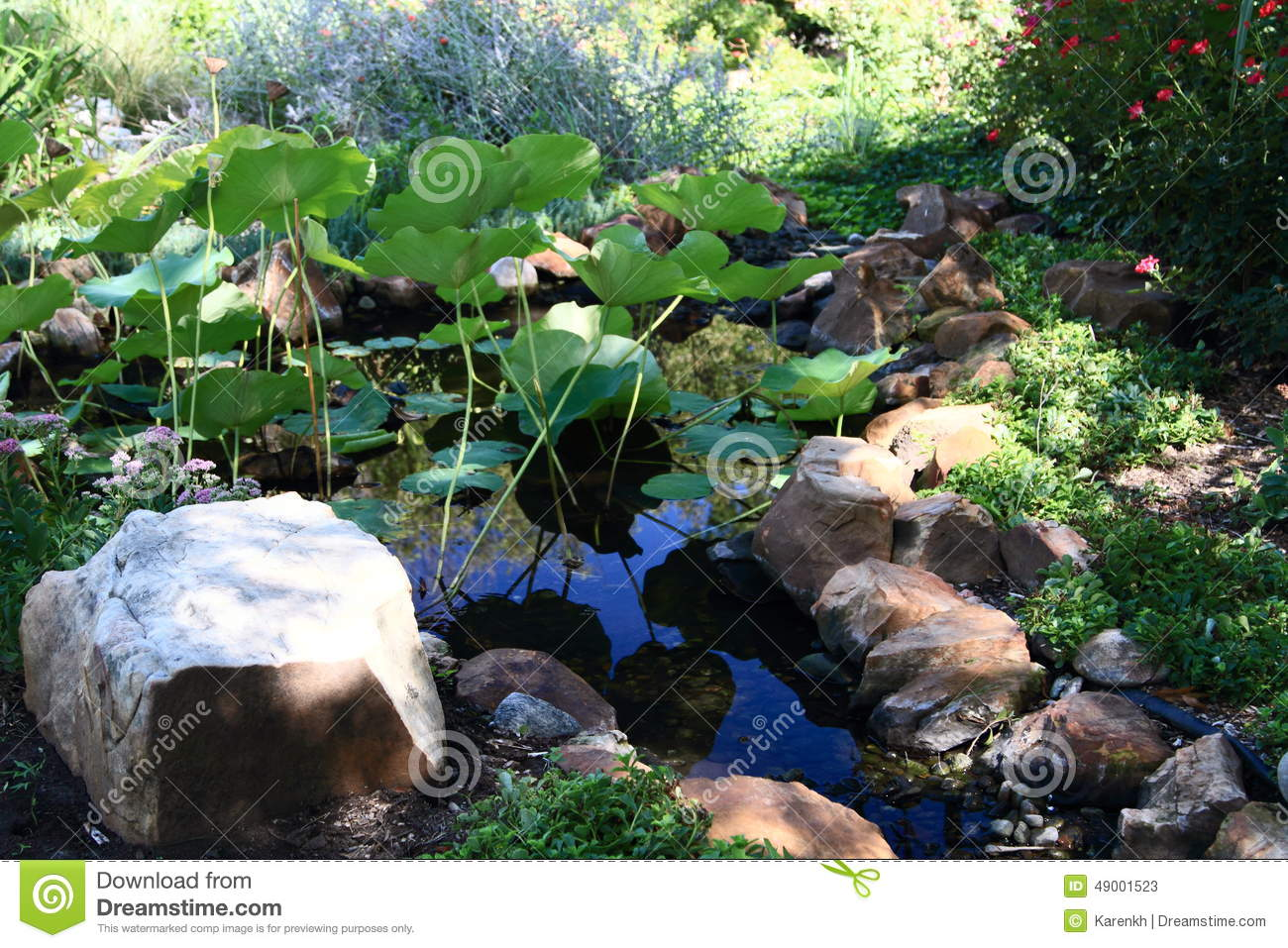 Shallow pond surrounded by stones and plants stock photo for Small garden pond plants