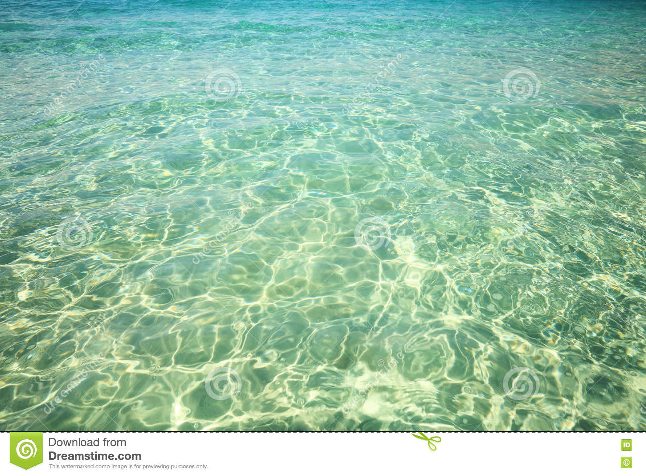 The gallery for --> Shallow Water Texture