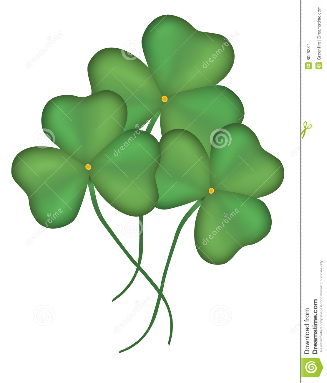 shamrocks stock illustration image of tradition luck
