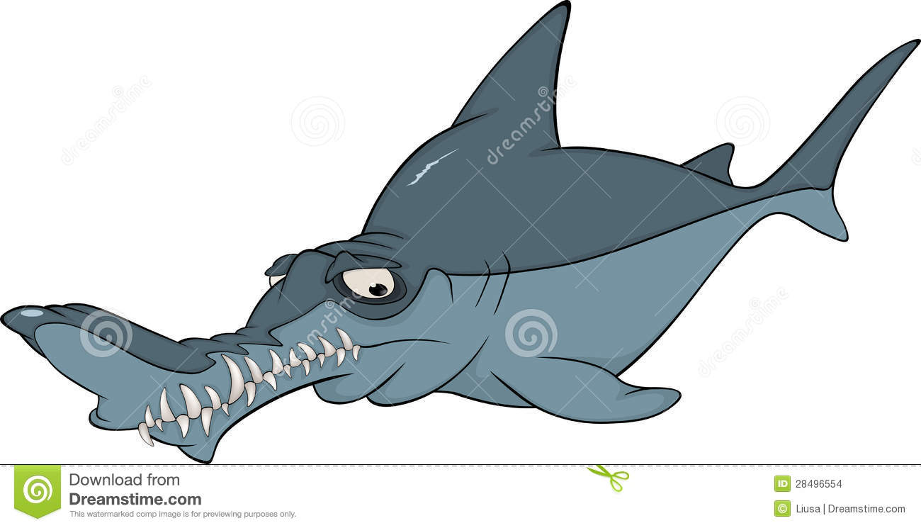Dark blue shark with the rumpled nose and the big teeth.