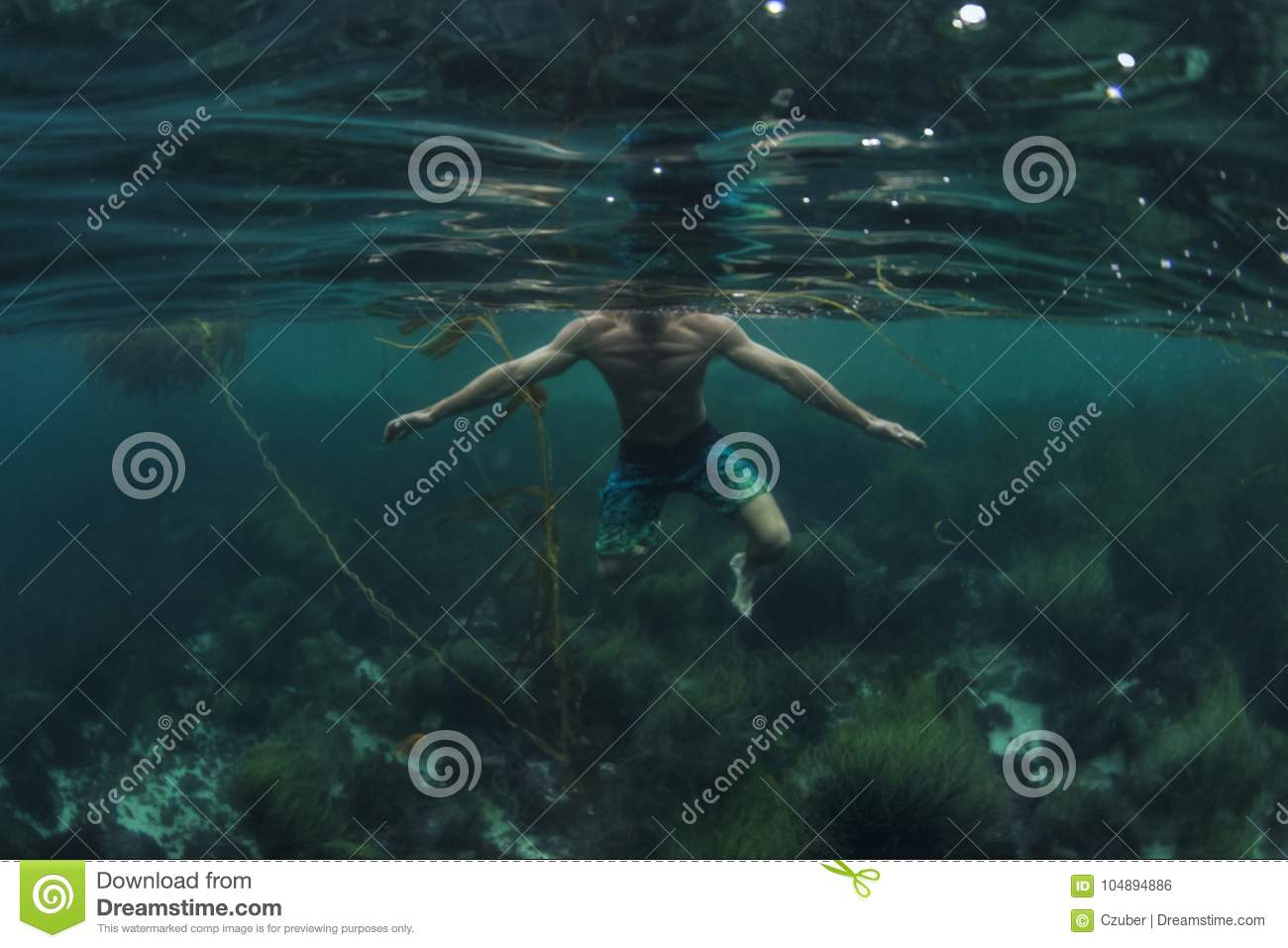Shark P.O.V. of swimmer treading water in shallow water of ocean