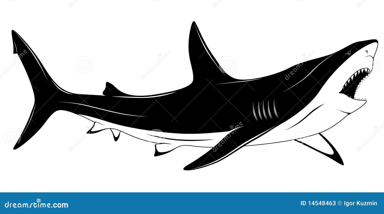 Polynesian Sharks Mouth By Cameron Rutten: Shark, Tattoo Stock Photos