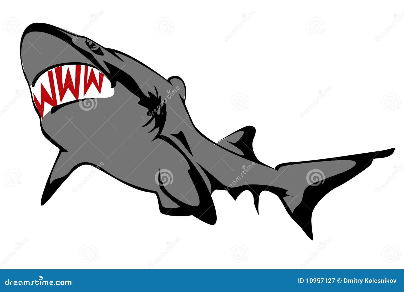 shark fin white background - photo #19
