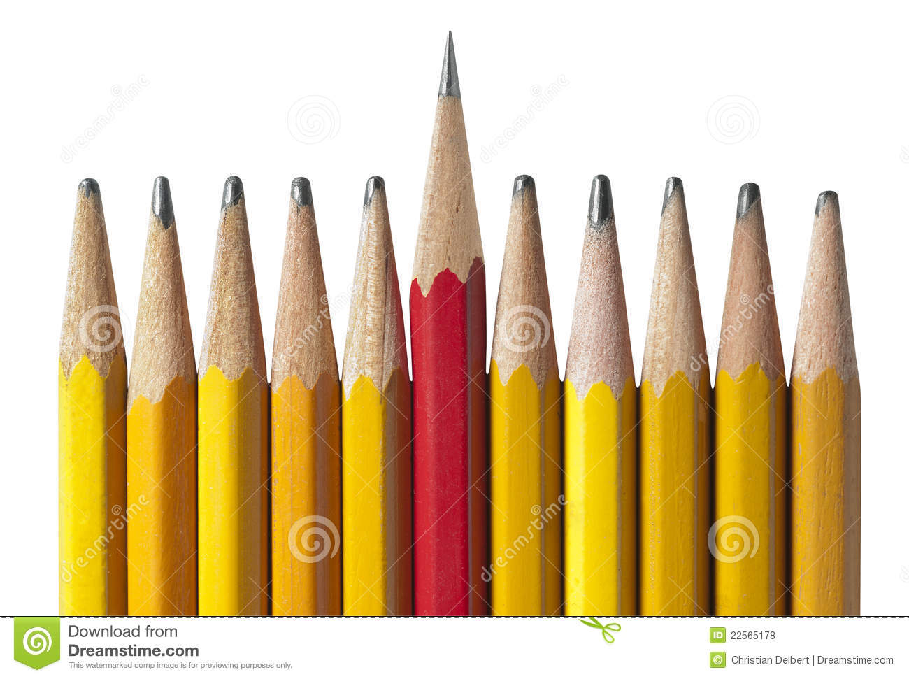 Sharpest Pencil in the Bunch, isolated