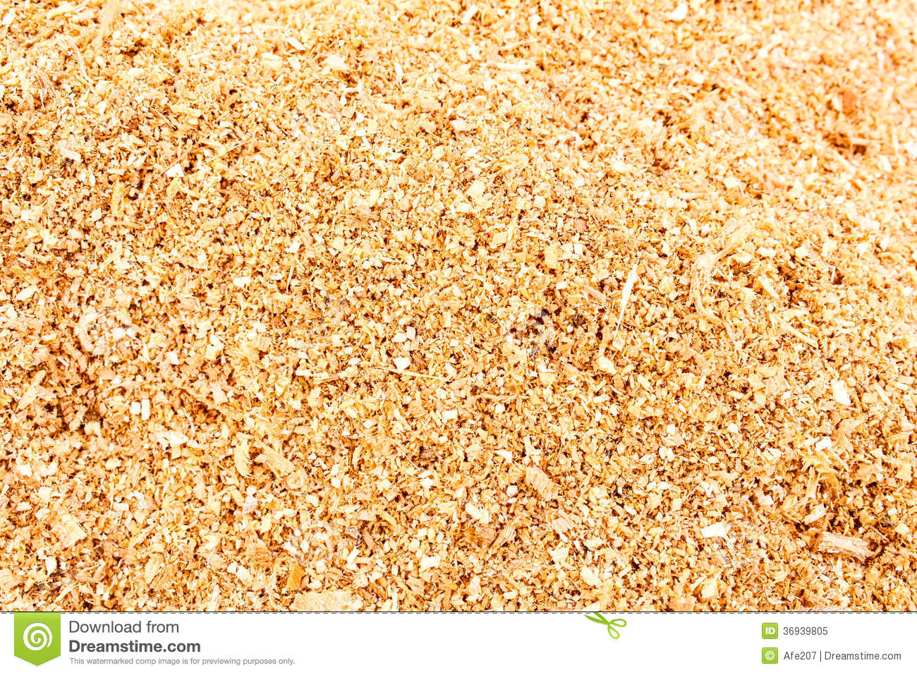 Shavings in workshop wood sawdust texture background