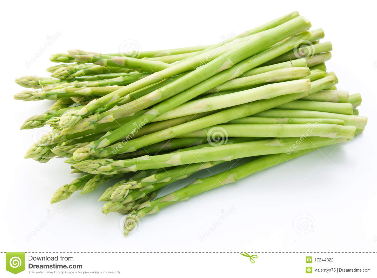 Asparagus Clipart Sheaf of asparagus on a white