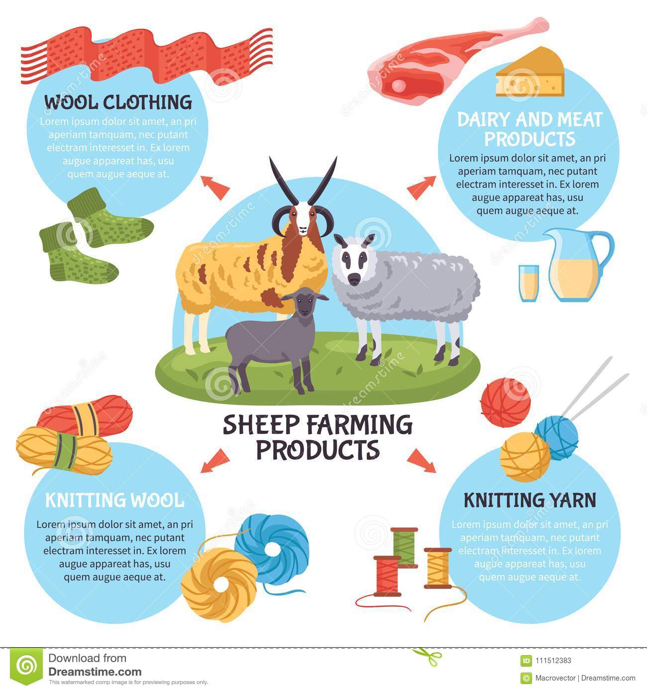sheep farm infographic poster breeding infographics wool yarn dairy meat vector clothing flat illustration animals clipart dreamstime preview illustrations vectors