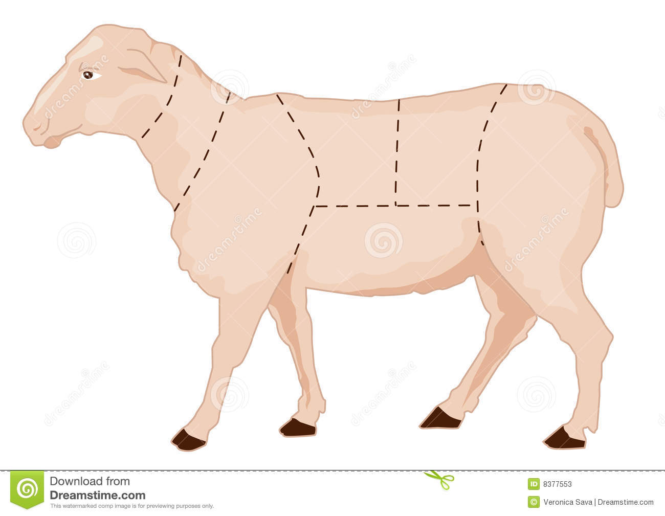 how to butcher a lamb pdf